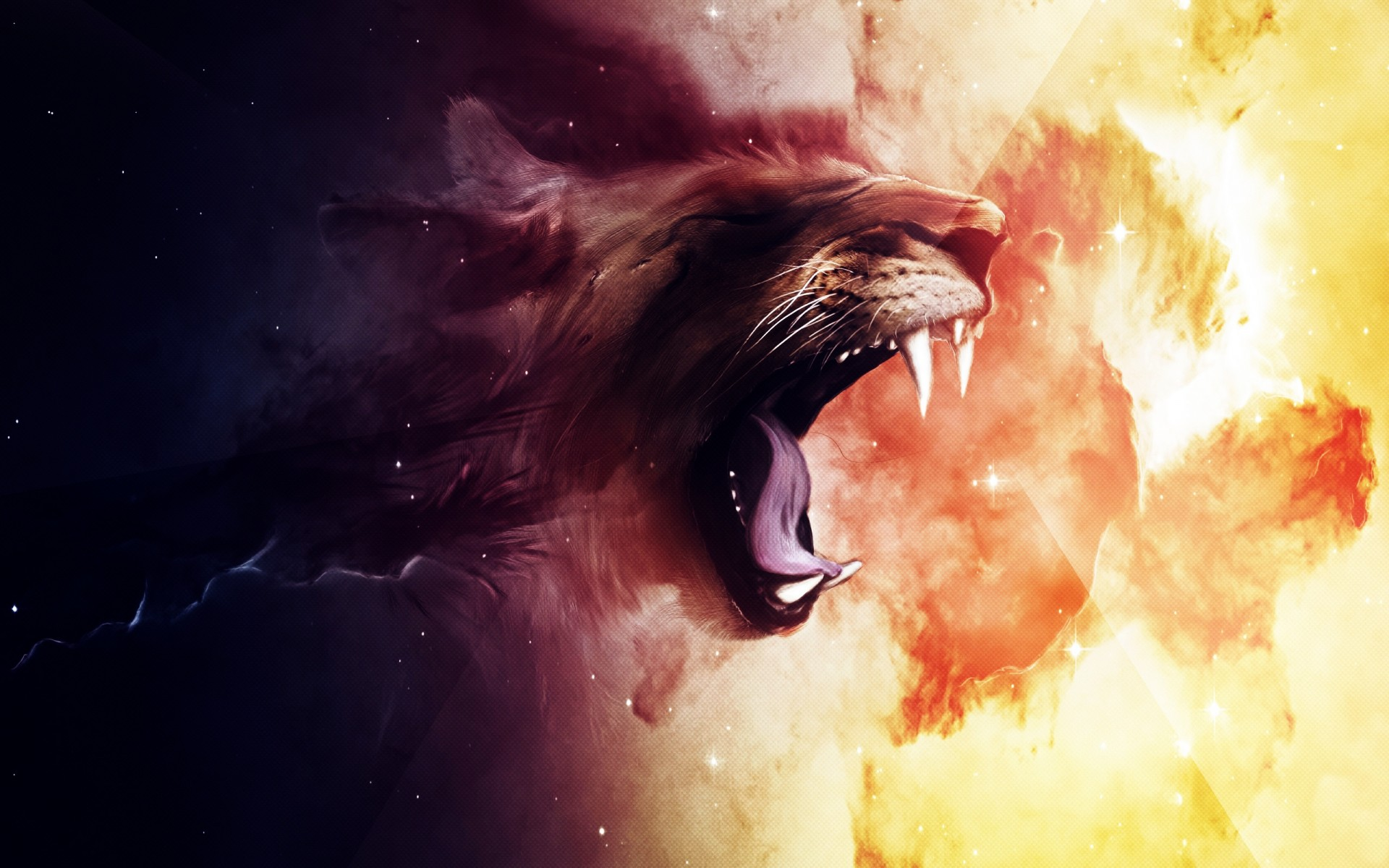 Lions Roaring Wallpaper / Hd Wallpapers  yearbook ideas 1920x1200