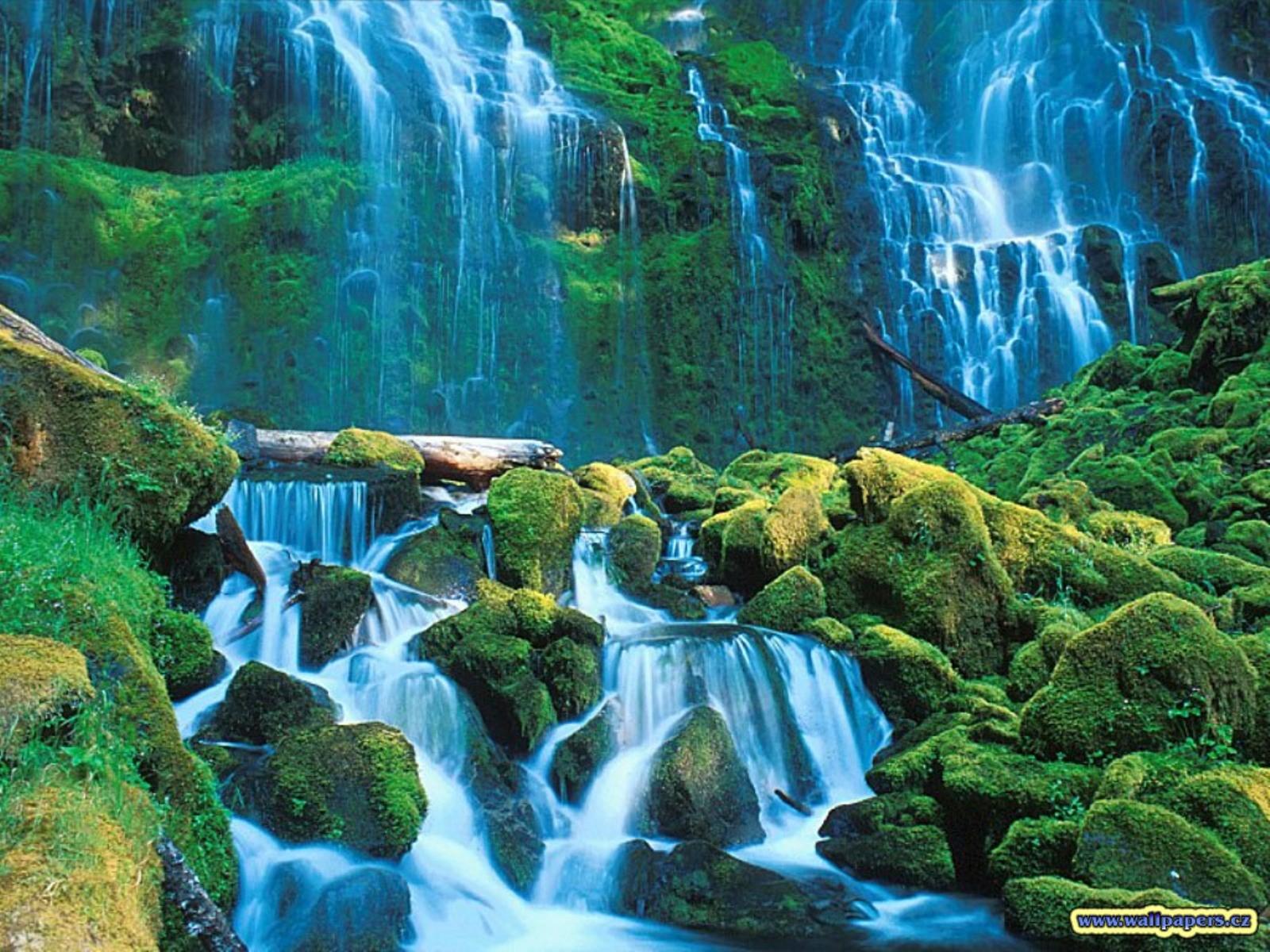 live nature wallpaper hd for pc | adsleaf
