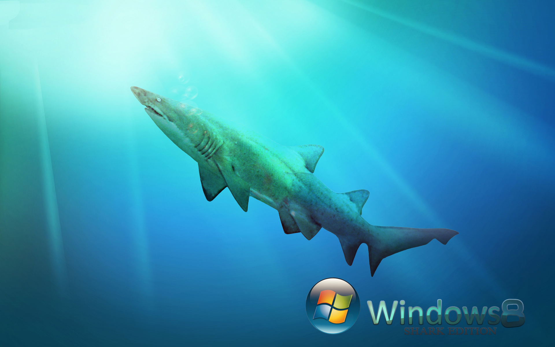 Live Wallpapers For Windows 8 30 Wallpapers – Adorable Wallpapers
