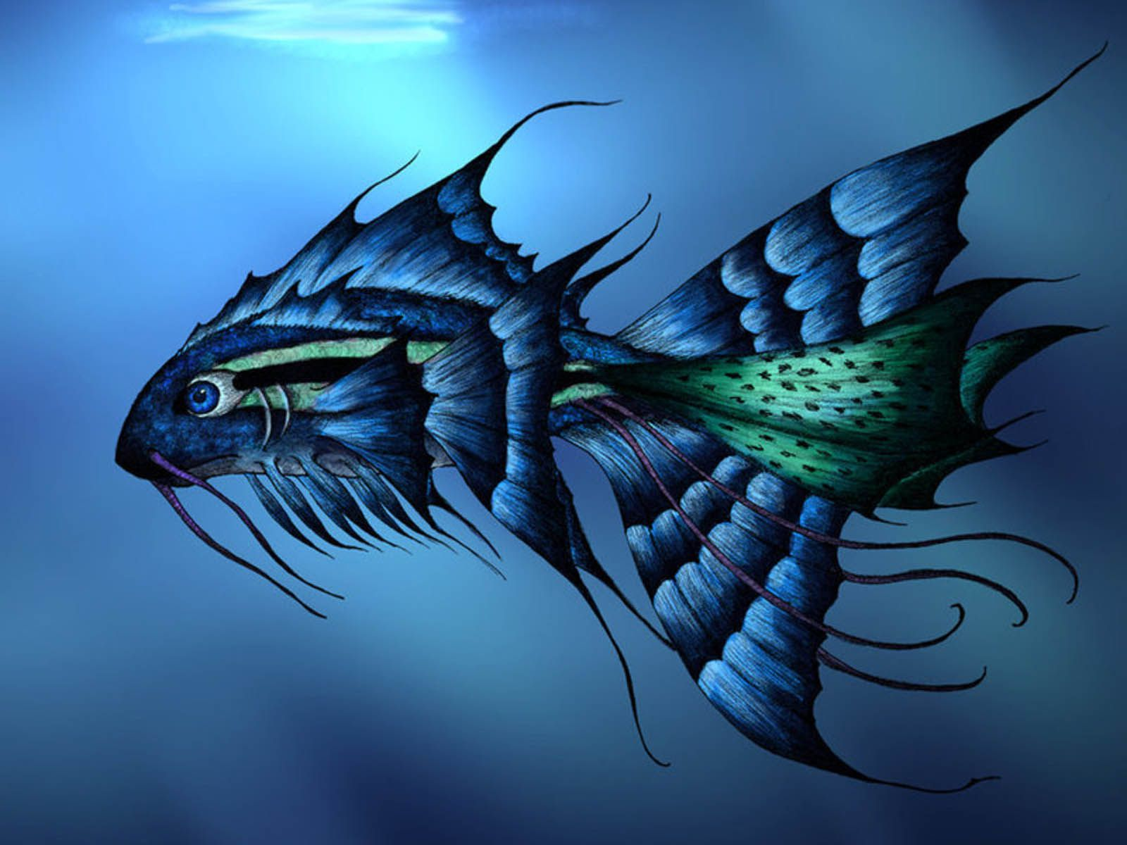 Live fish wallpaper for desktop download 33 wallpapers for Live to fish