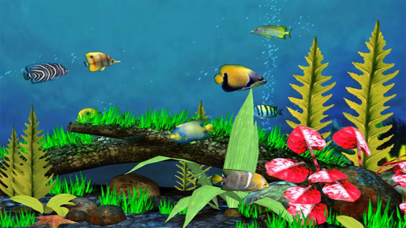 Картинки для рабочего стола анимации аквариум