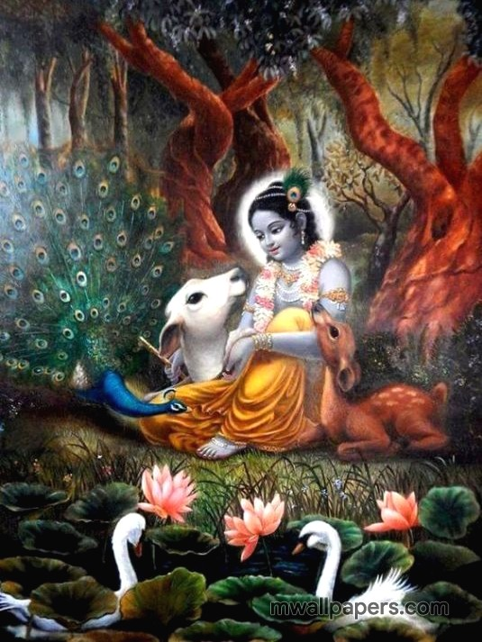 Lord krishna hd wallpapers for iphone31