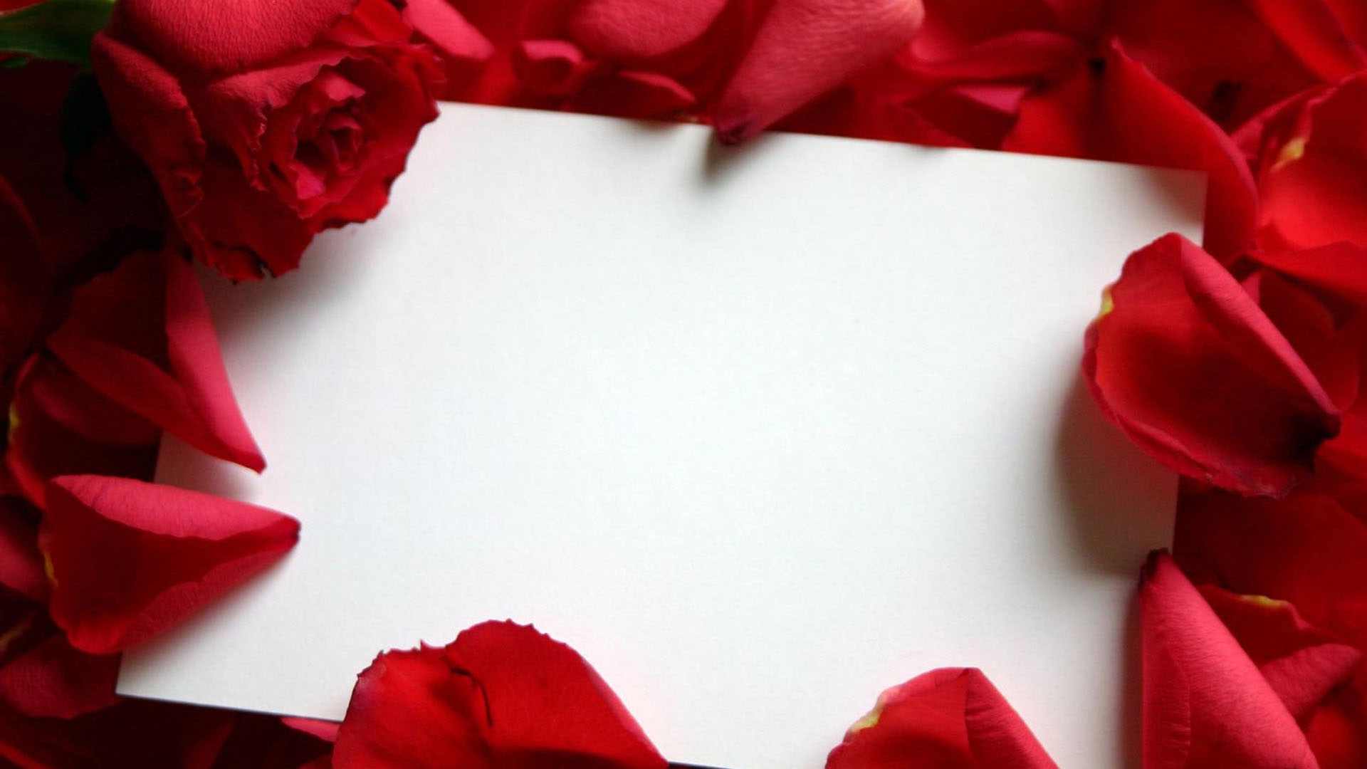Love Letter Wallpapers Group 1920x1080