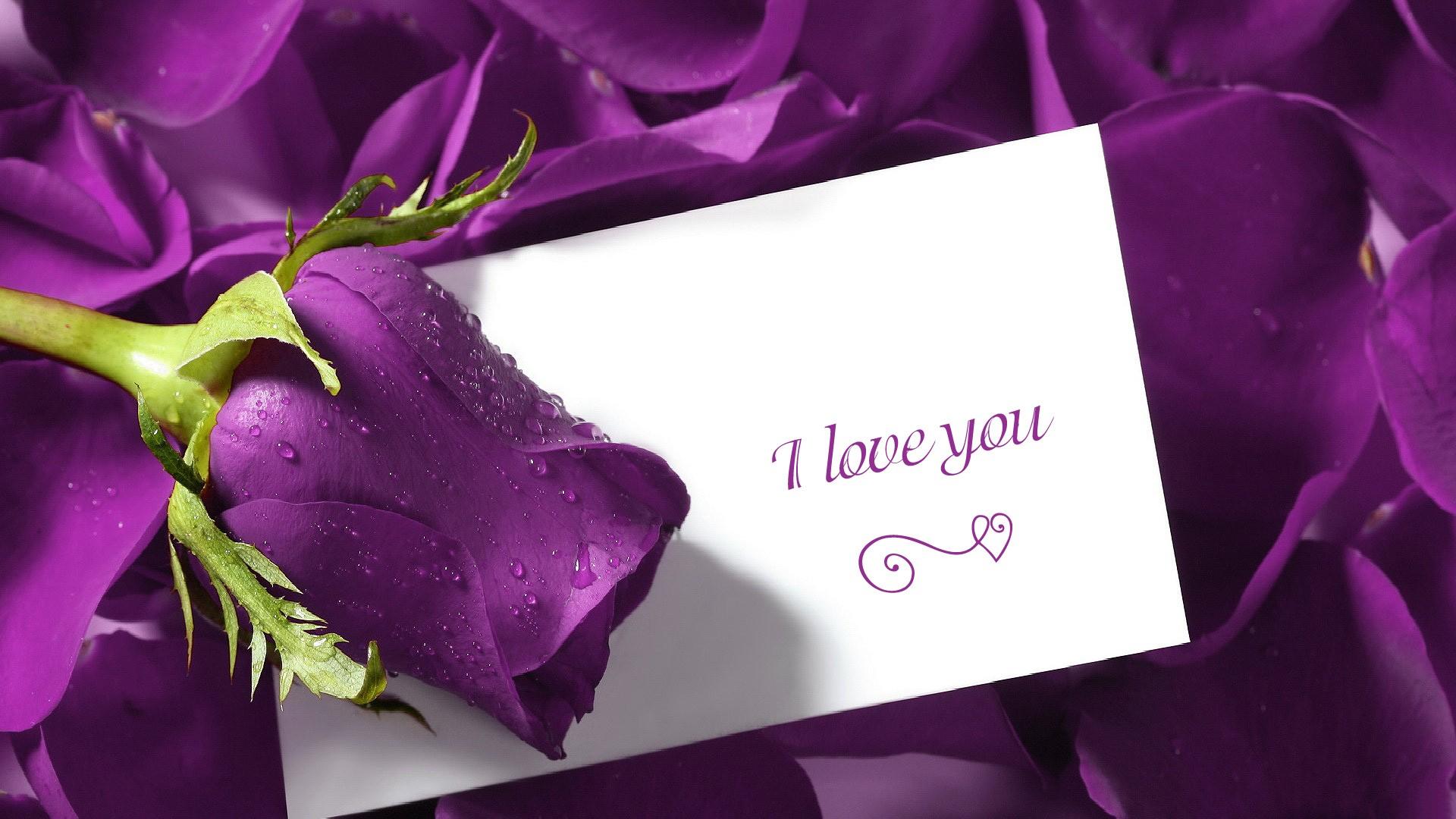 Wallpaper download new love - Wallpaper Download New Love 87