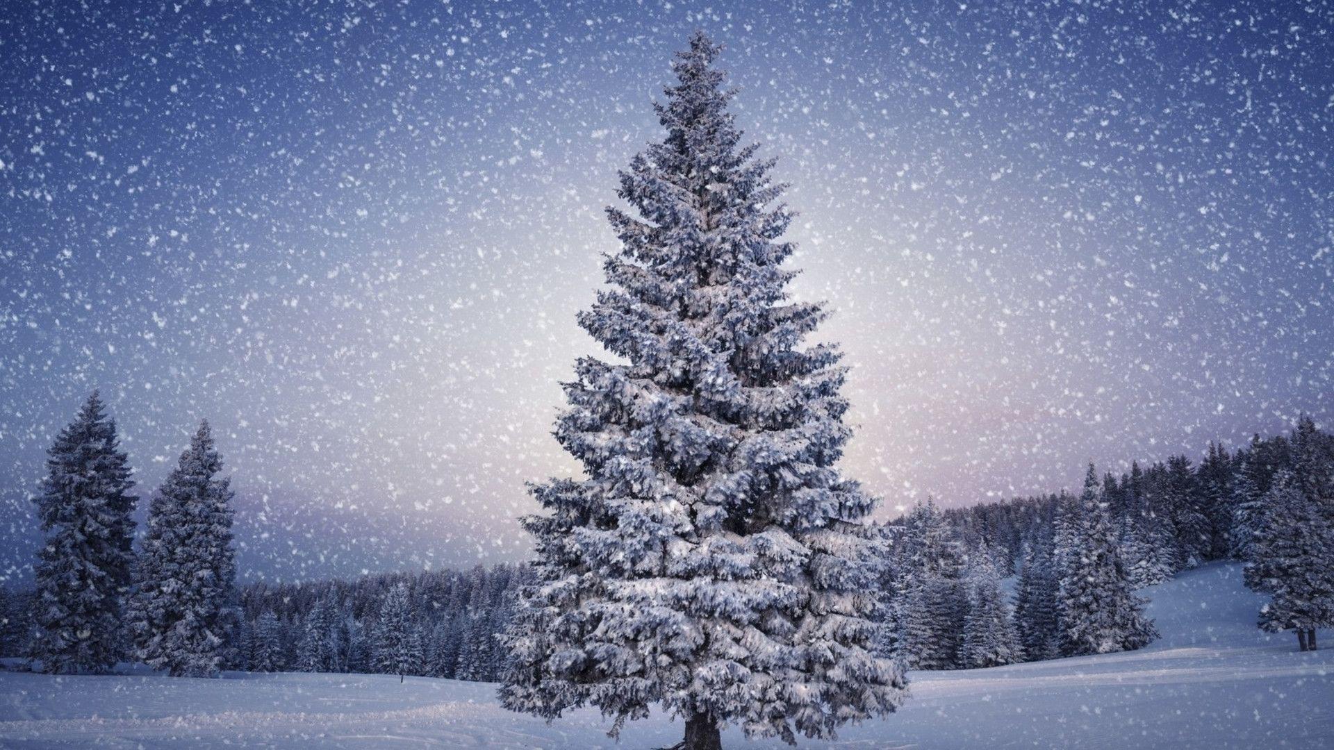 christmas wallpaper mac retina – merry christmas and happy new year 2018