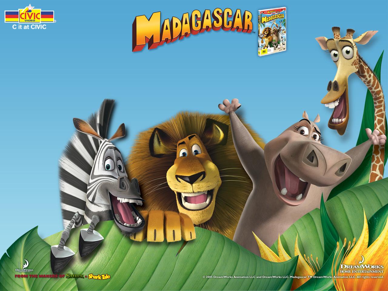 wallpaper madagascar film movies - photo #6