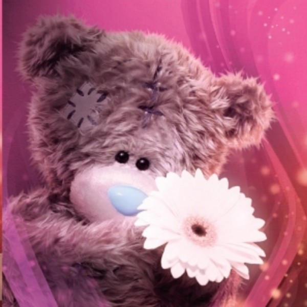 me to you bears images Me to you wallpaper and background photos 600x600