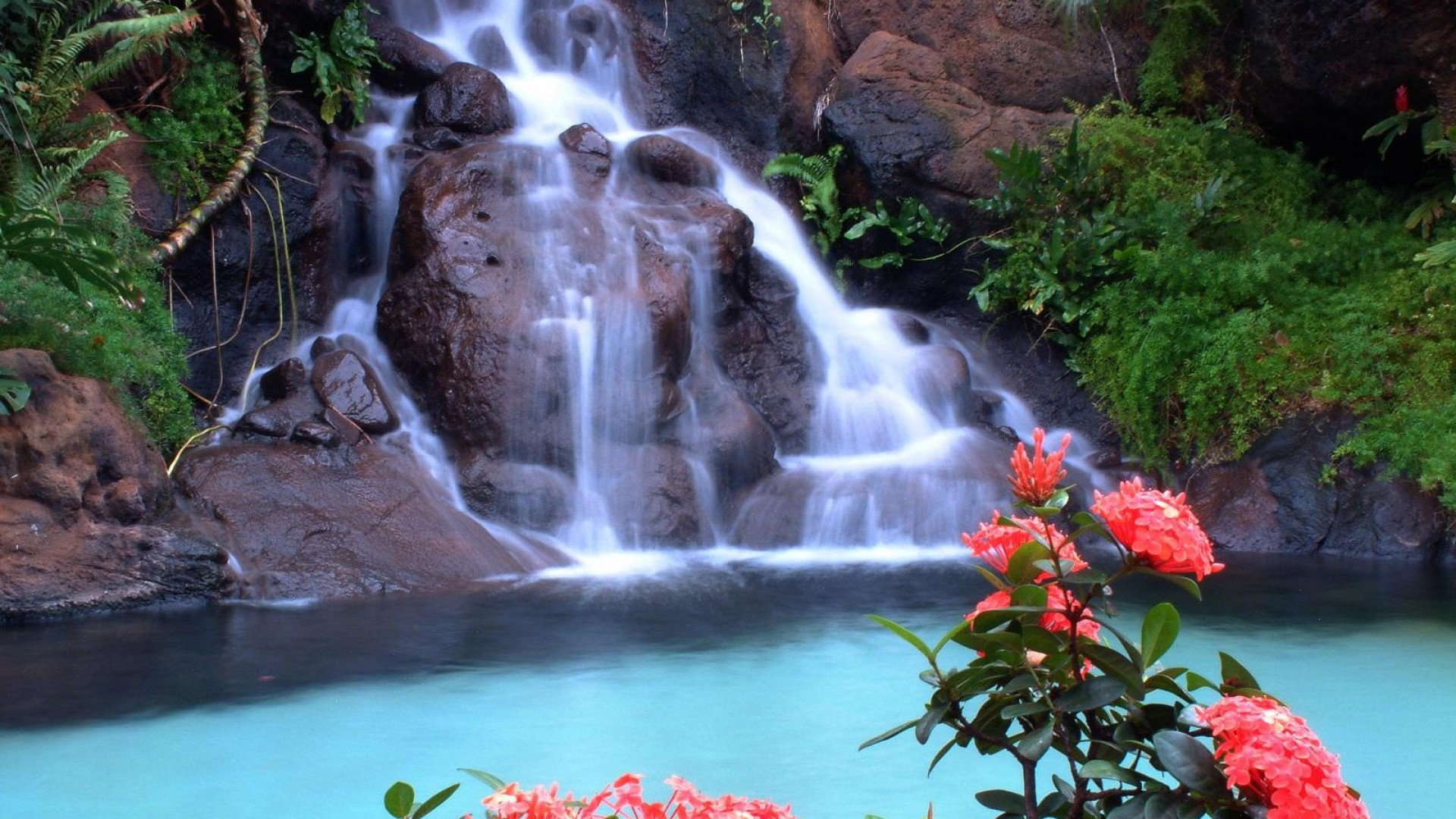 Waterfall HD Wallpapers Pictures Images Backgrounds Photos 1920x1080