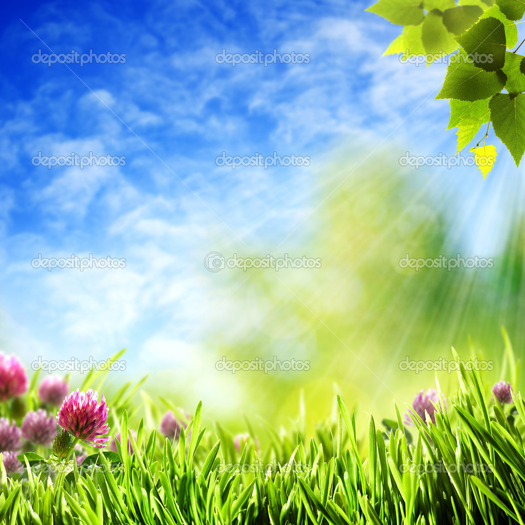 natural backgrounds 30 wallpapers � adorable wallpapers