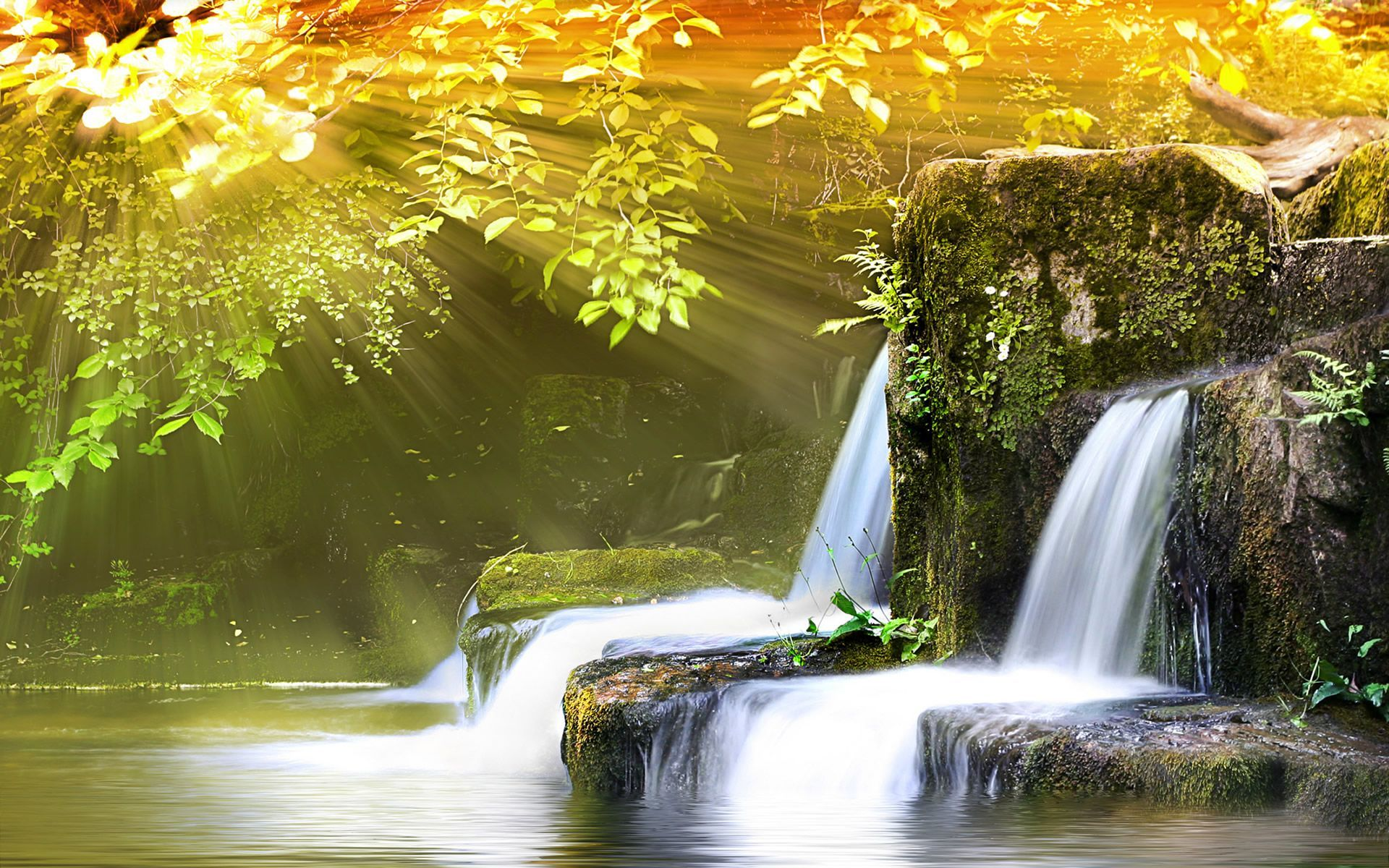 Nature Background 27 Wallpapers Adorable Wallpapers