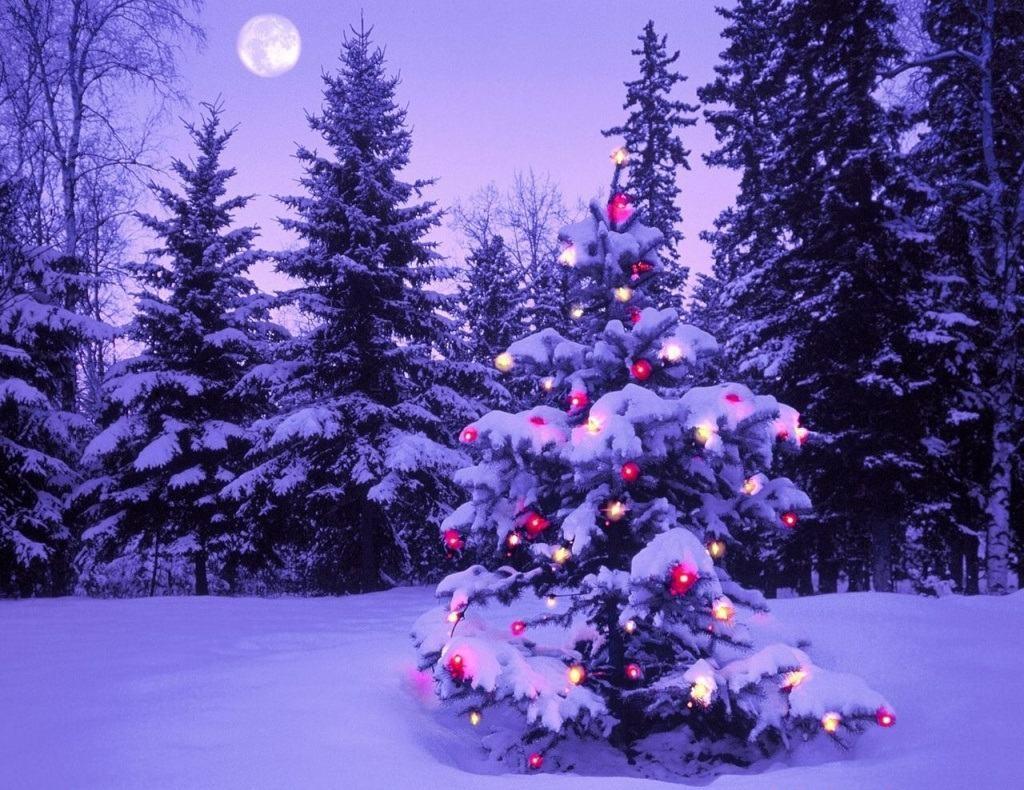 Beautiful Christmas Wallpapers For Iphone And Ipad Smashing Magazine