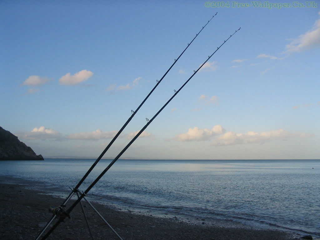 Filesterna Maxima And Fishing Line jpg Deep Sea Fishing Wallpapers