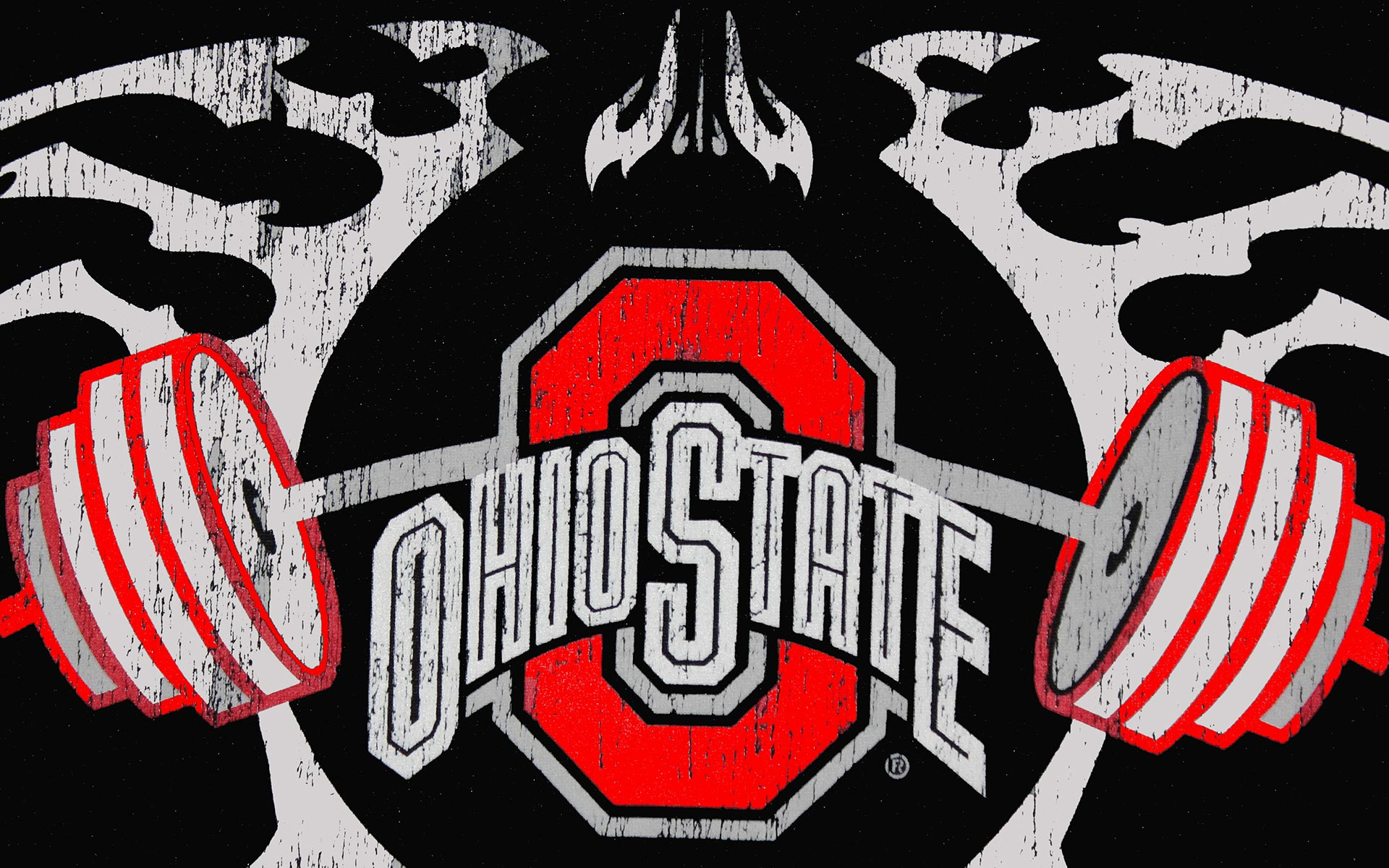 Ohio State Buckeyes Football Wallpapers  Wallpaper  1920x1200