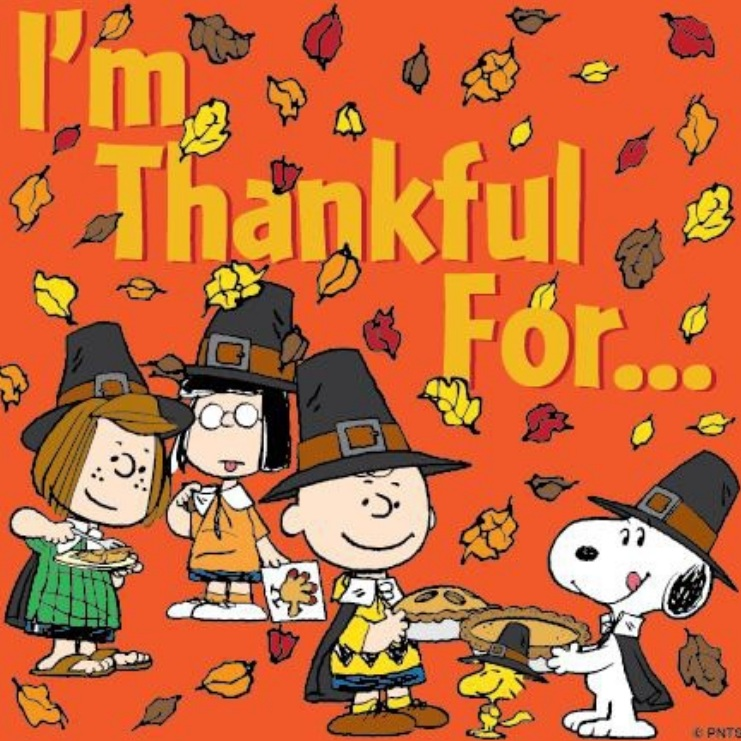 Snoopy Thanksgiving Wallpapers Wallpaper 741x741