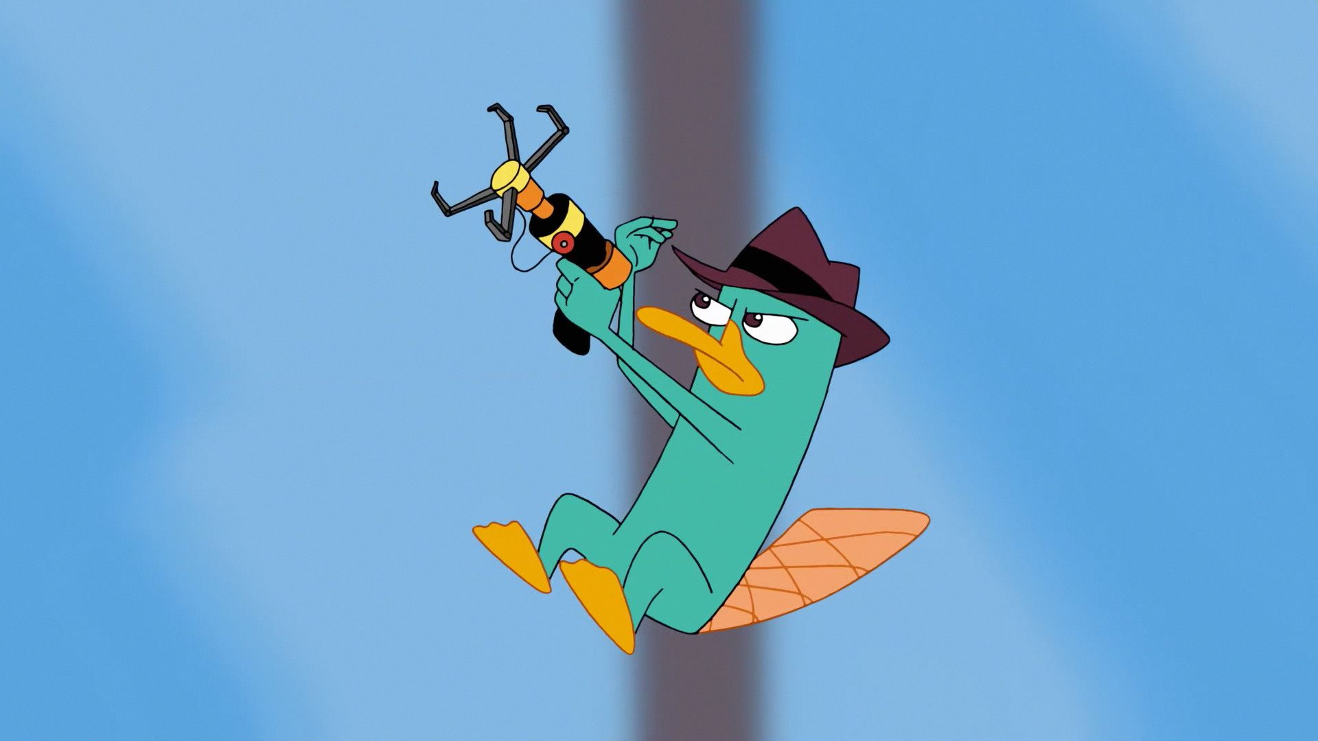 perry the platypus wallpapers 26 wallpapers � adorable