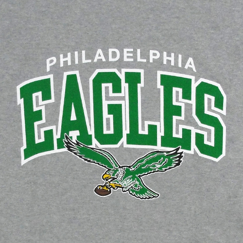 Philadelphia Eagles IPhone Wallpaper 500x500