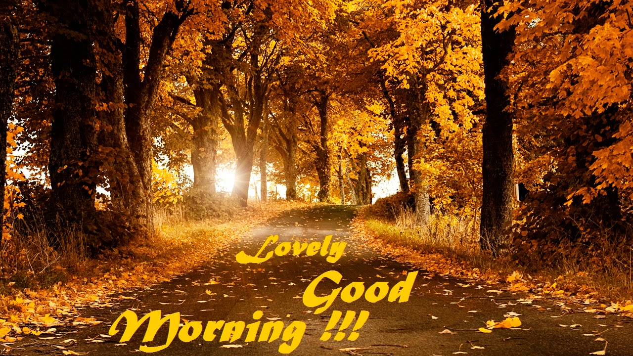 Good Morning Wallpapers Free Download 1280x720