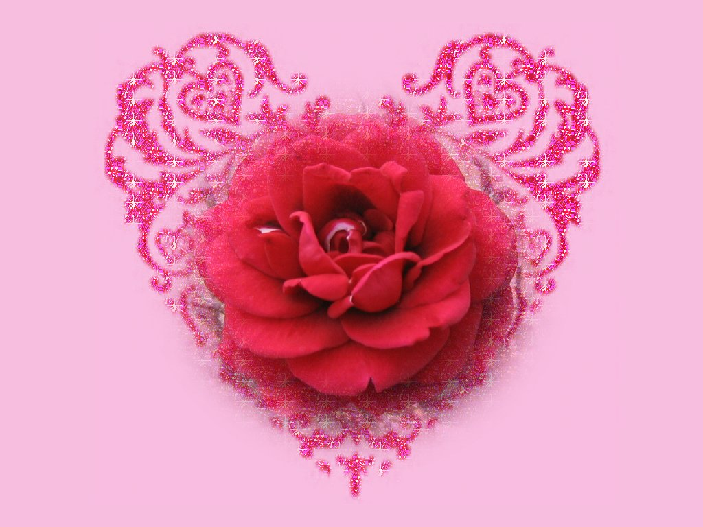 Bunch of Roses Wallpaper Wallpaper