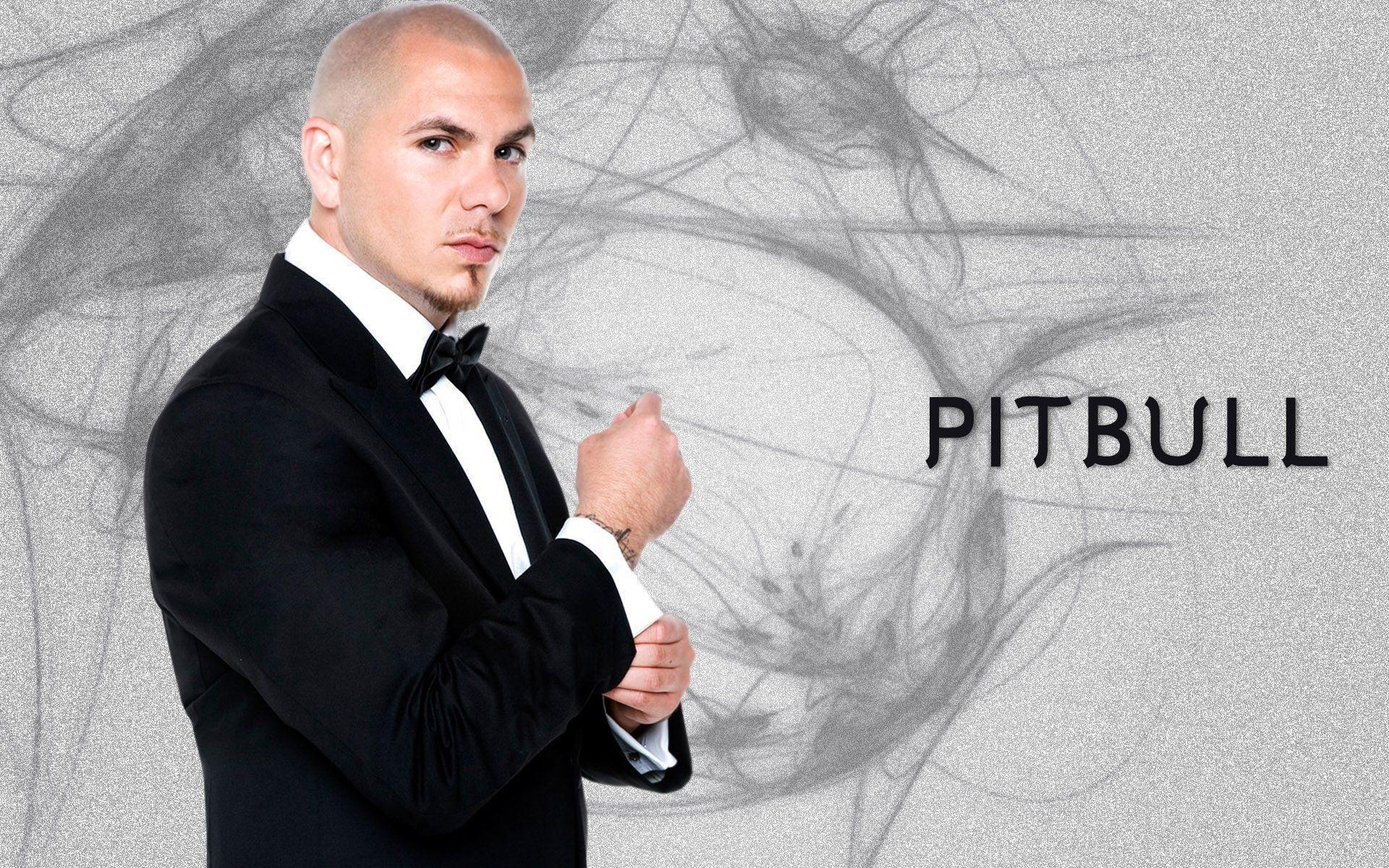 Pitbull Rapper Wallpaper