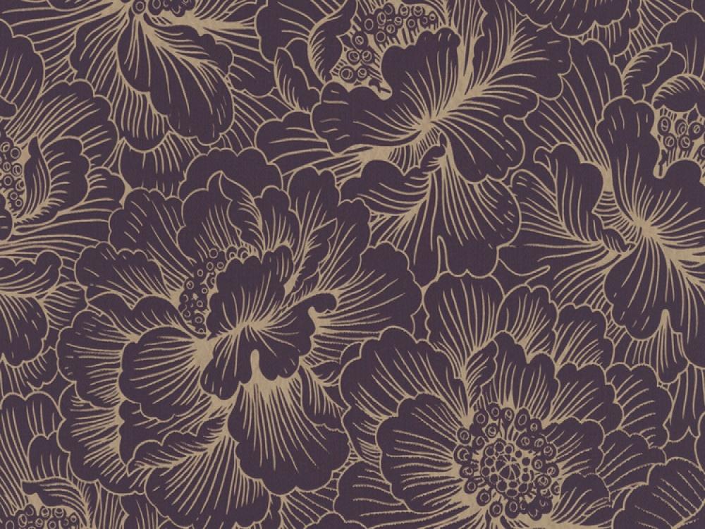 Plum Purple Wallpapers And Purple On Pinterest 1000x750