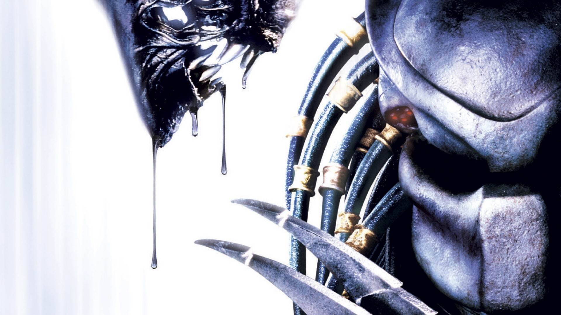 Alien Vs Predator Wallpaper 2 Adorable Wallpapers