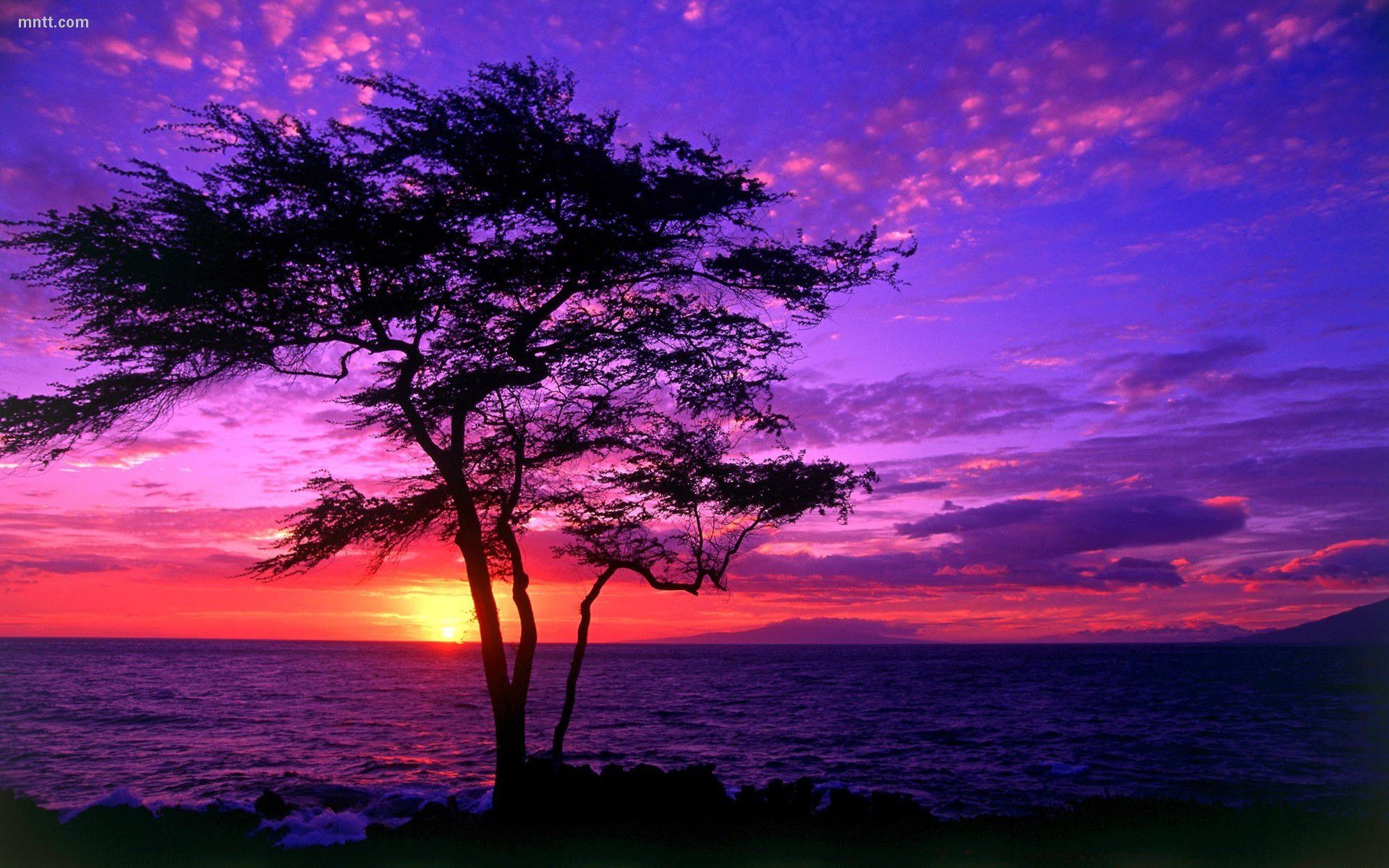 pretty sunset backgrounds (17 wallpapers) – adorable wallpapers