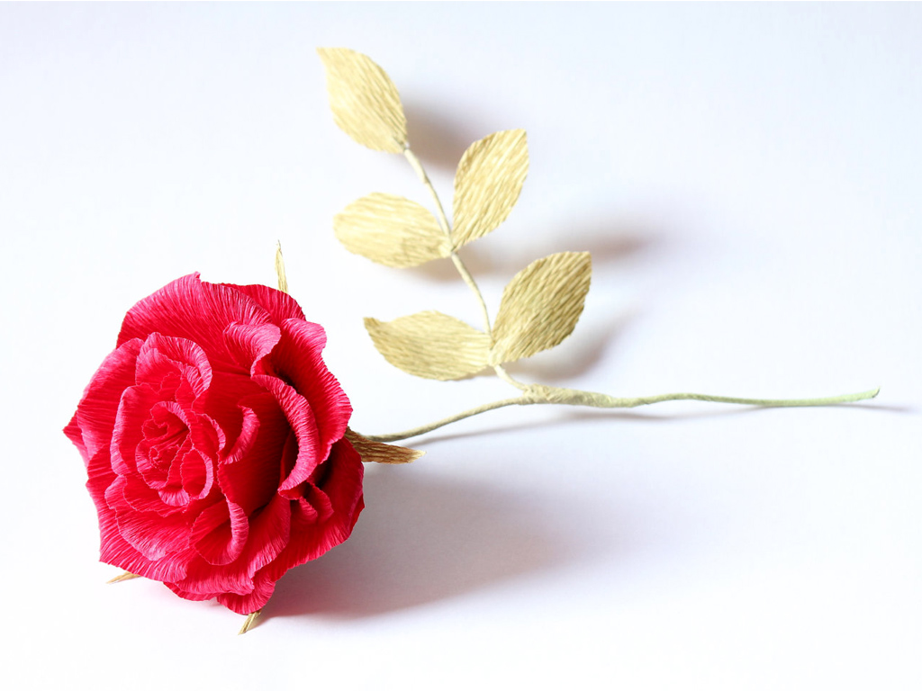 rose flowers wallpapers 39 wallpapers � adorable wallpapers