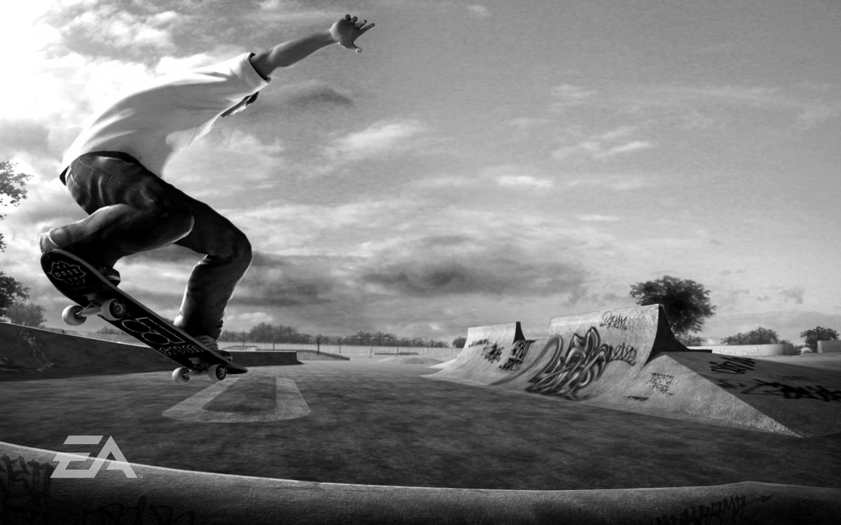 Skateboards Wallpapers Group  1680x1050