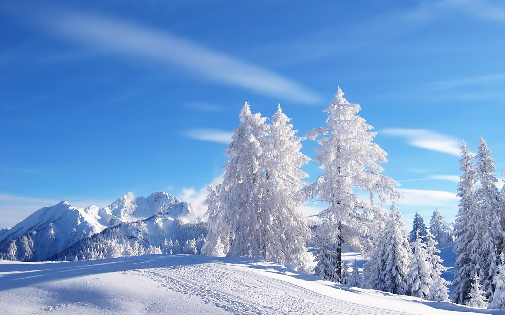 Snow Pictures Wallpapers 004