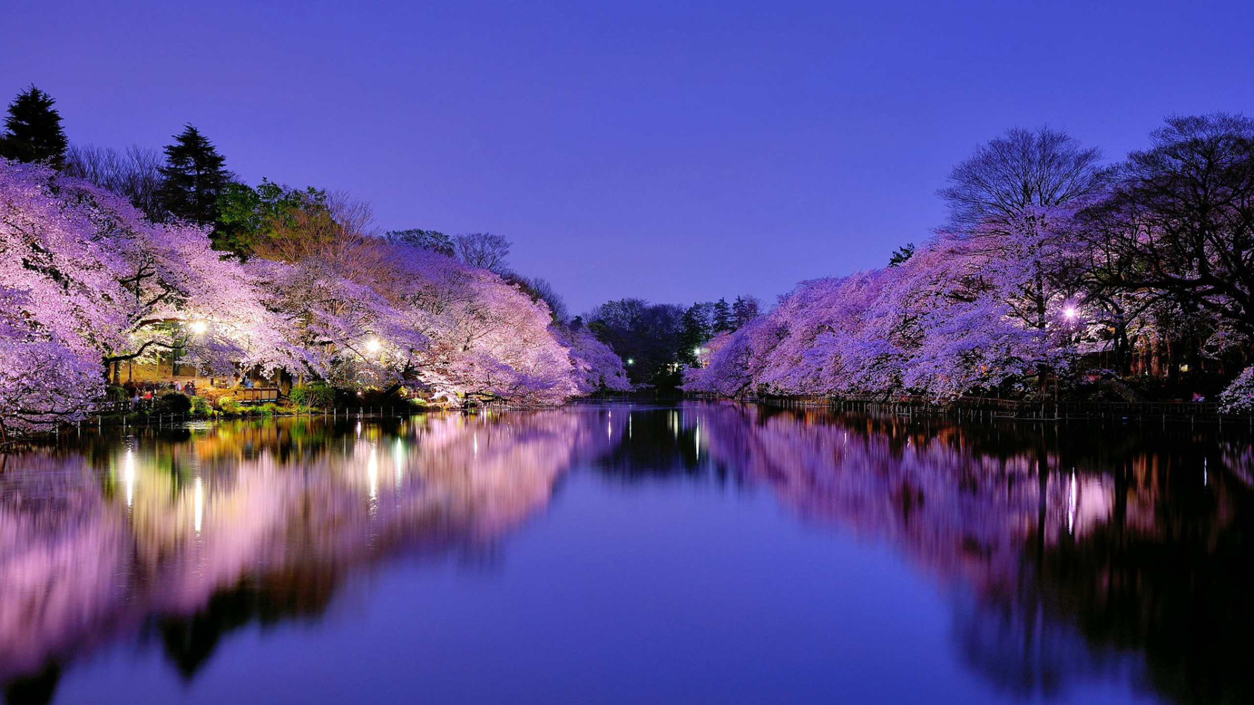 Spring Pictures Wallpapers (24 Wallpapers) – Adorable ...