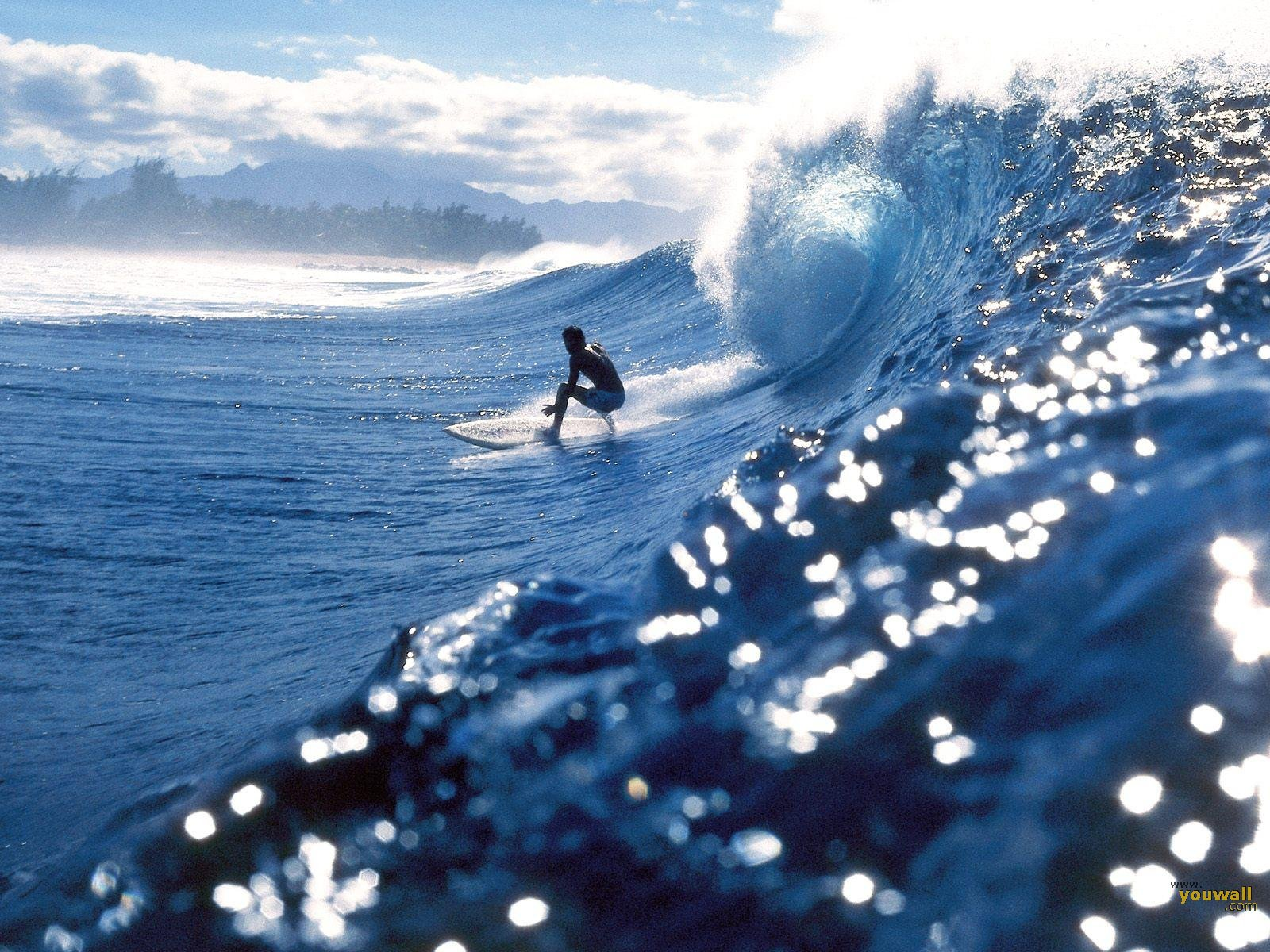 Surfing HD Wallpapers  Backgrounds  Wallpaper  1600x1200