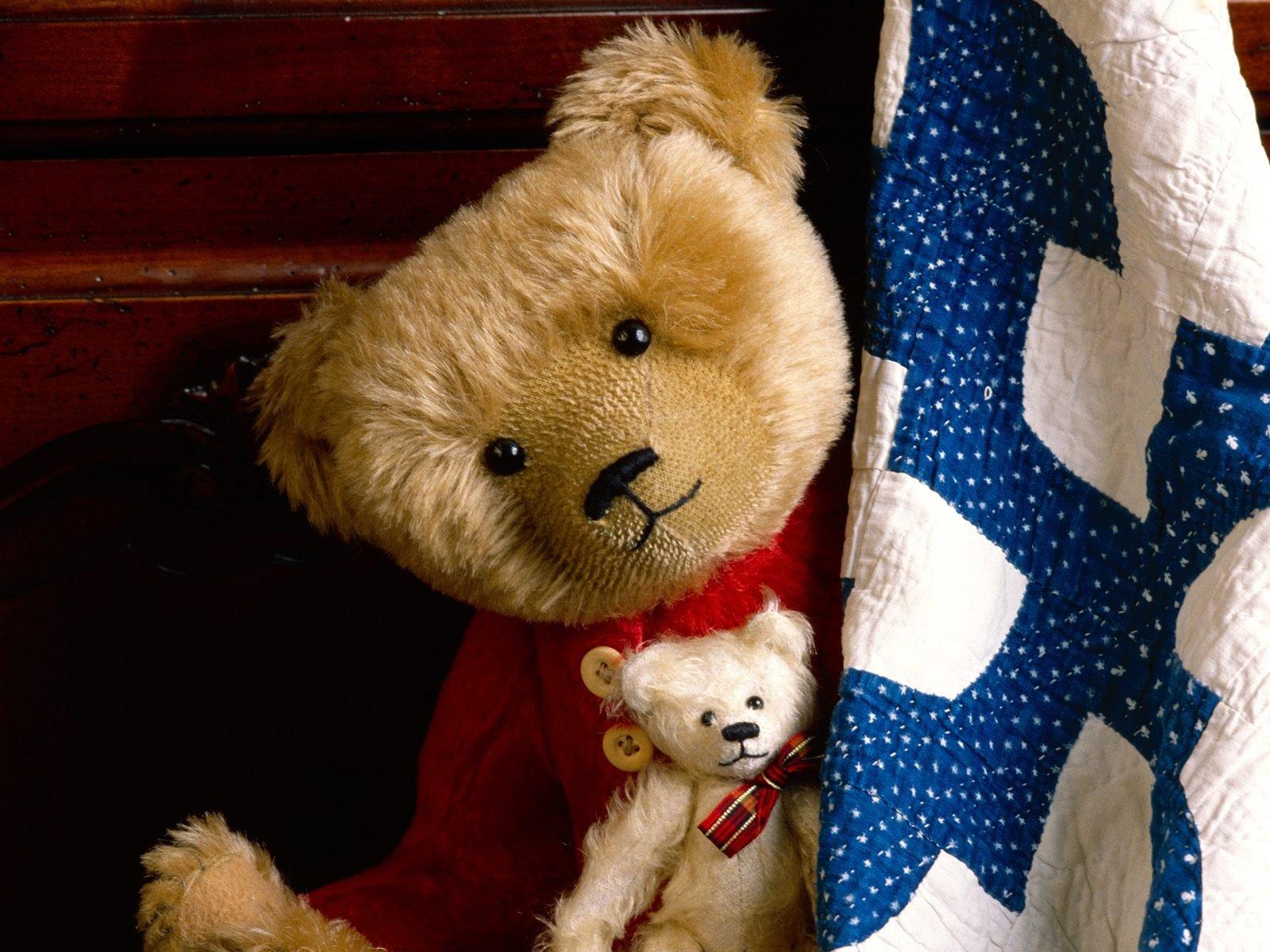 Download Wallpaper Toy Teddy Bear Teddy Iphone Hd 1600x1200