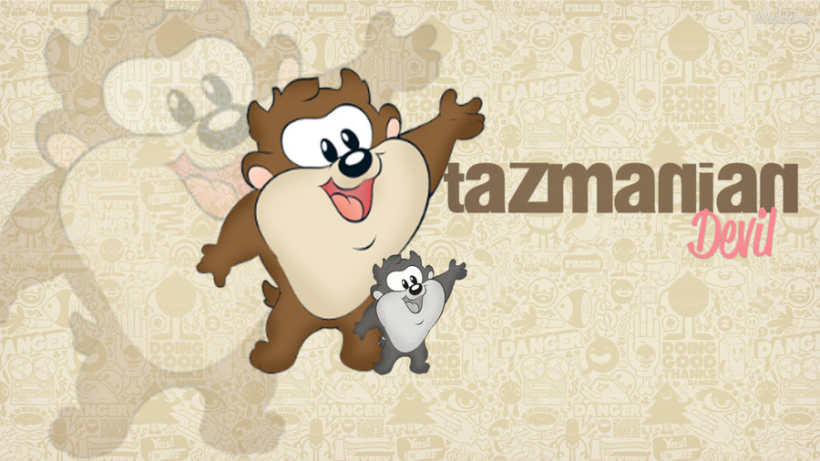 Taz Wallpapers Group  900x506