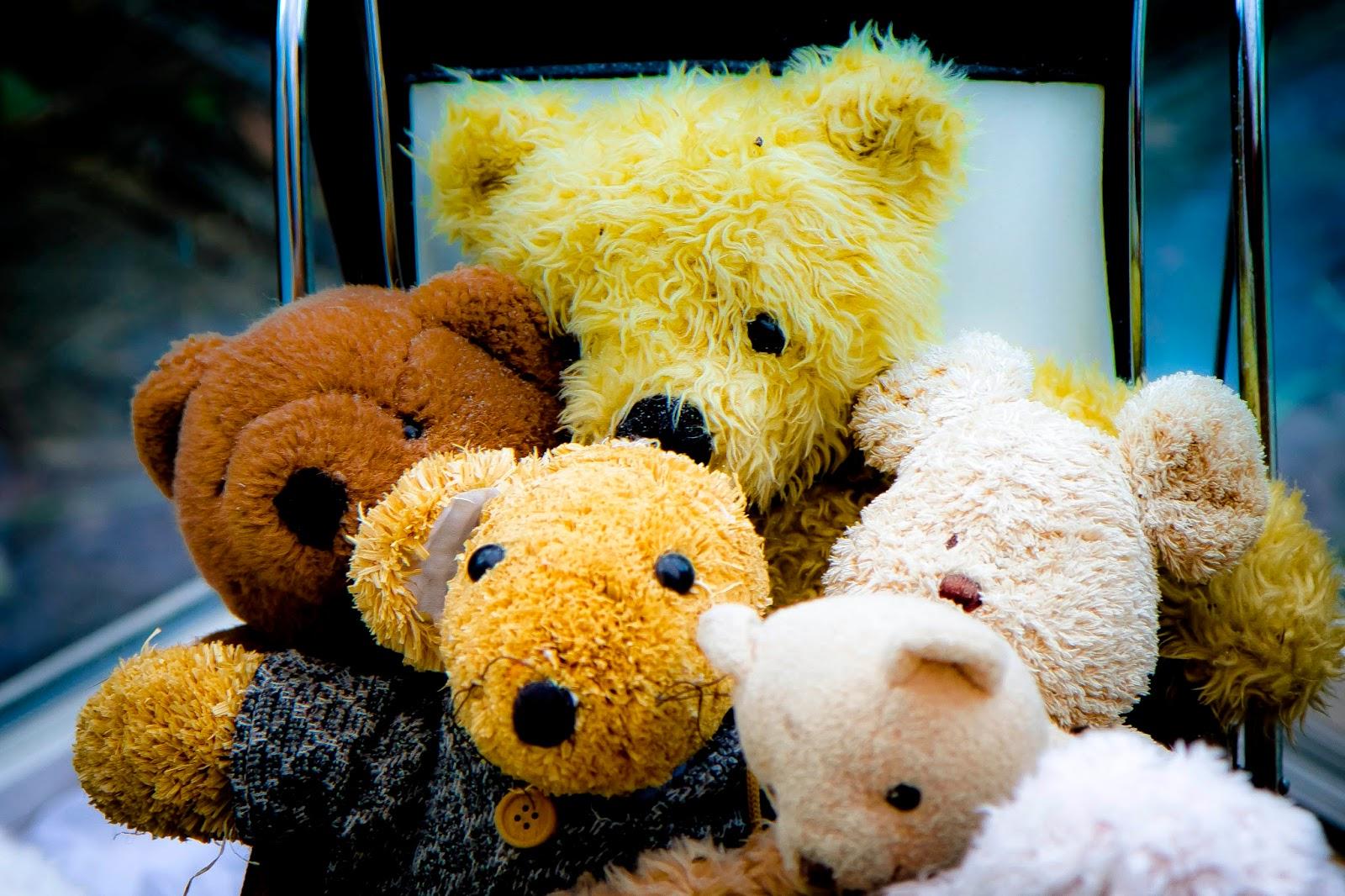 Romantic Teddy Bear Wallpapers 1600x1066