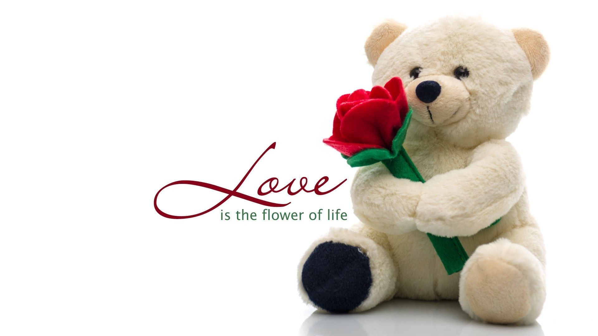 teddy bear wallpapers (7 wallpapers) – adorable wallpapers