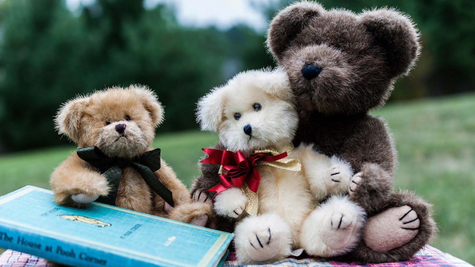 cute teddy bear wallpapers for little kids and children pixhome 1600x900