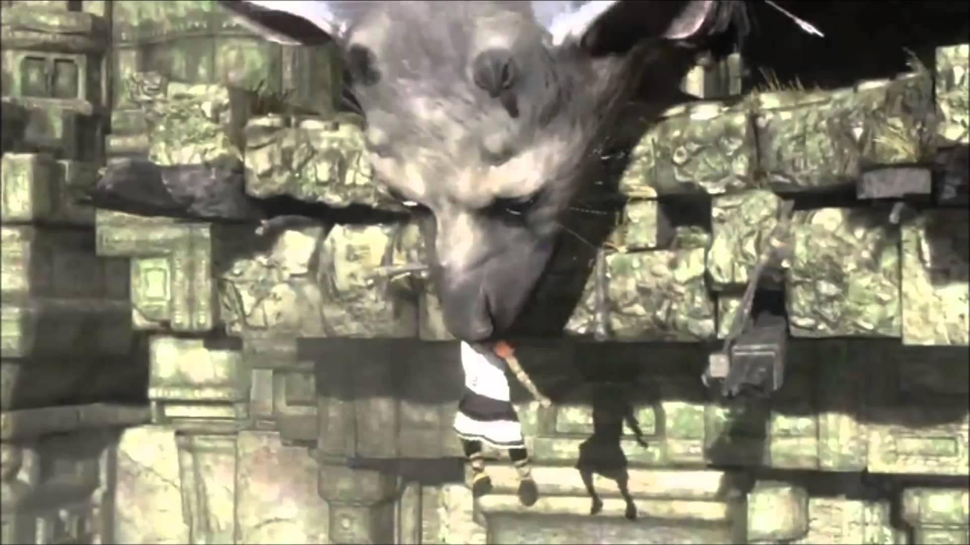 The Last Guardian Hd Wallpapers Backgrounds Wallpaper 1920x1080