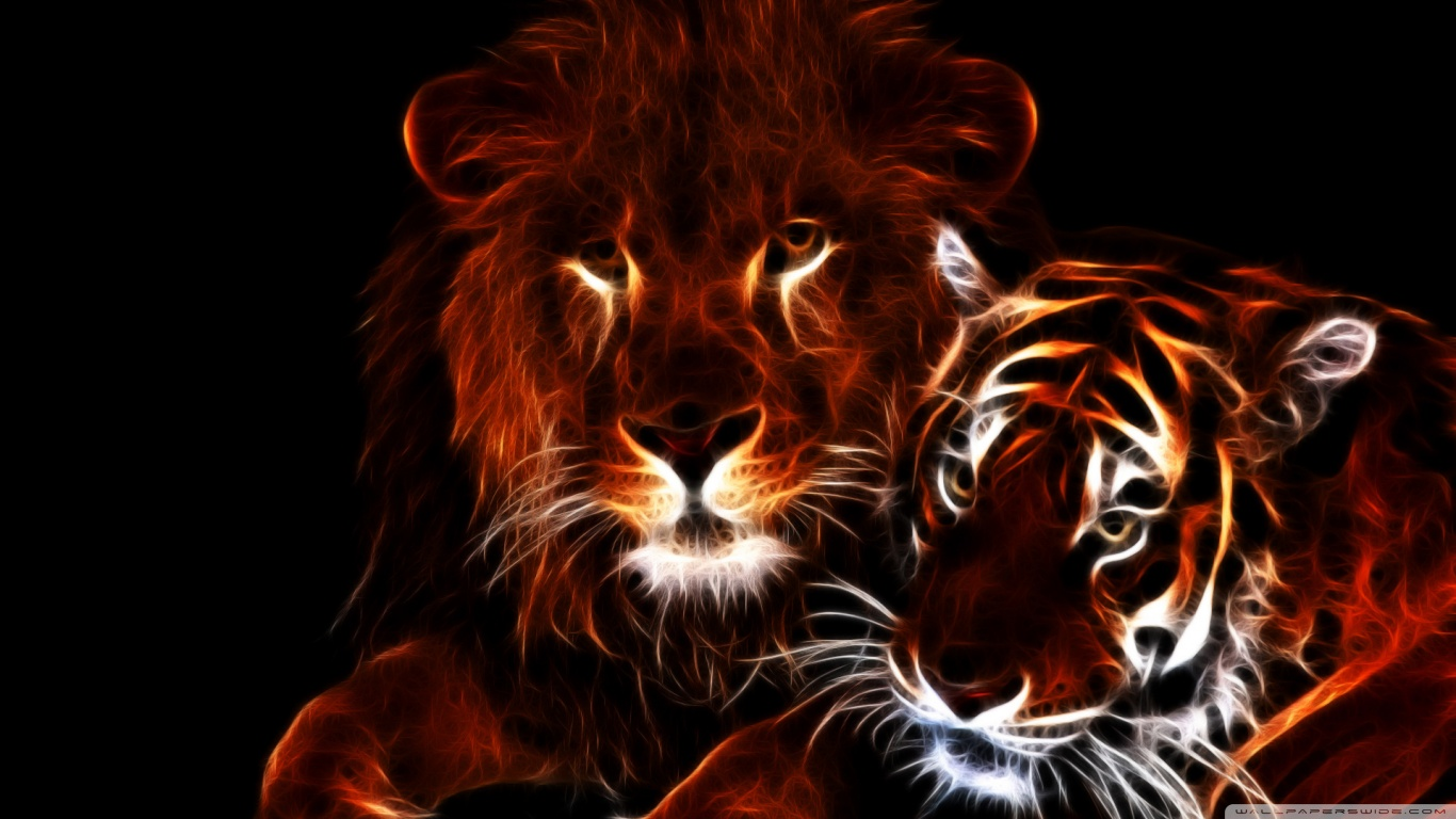 Tiger and lion wallpapers