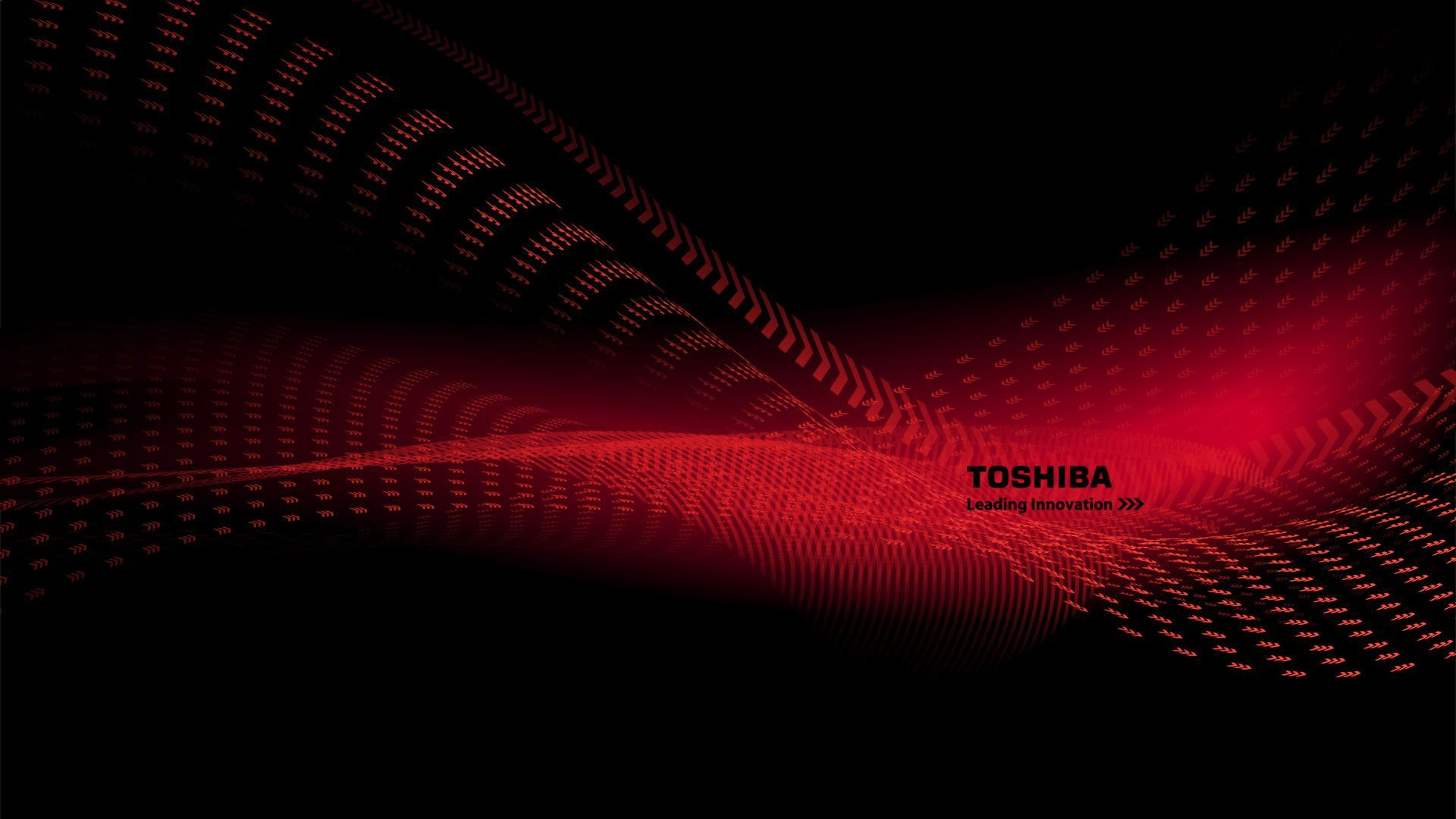 Toshiba High Quality Wallpaper  Free Wallpapers 1920x1080