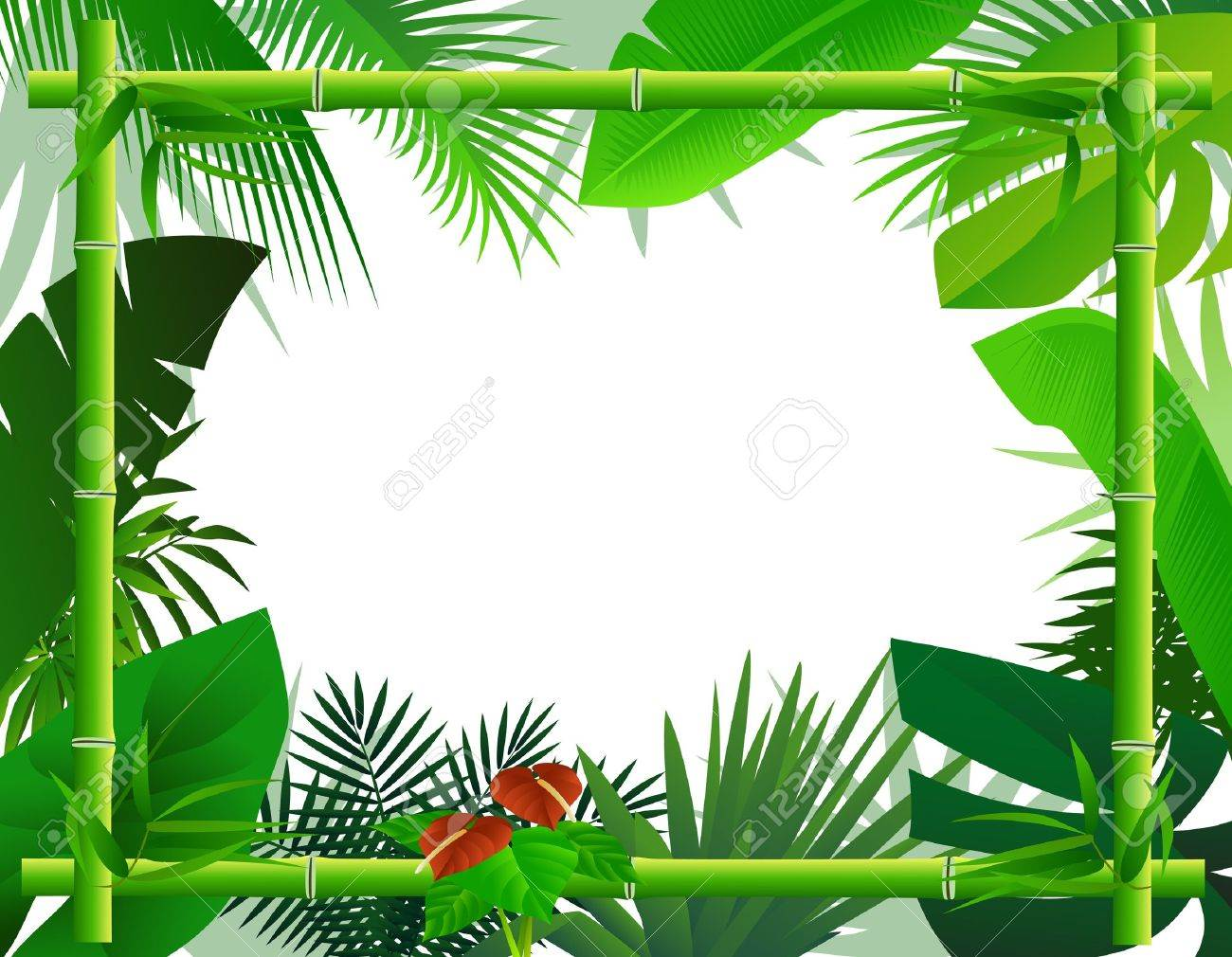 + ideas about Tropical Background on Pinterest  Backgrounds 1300x1010