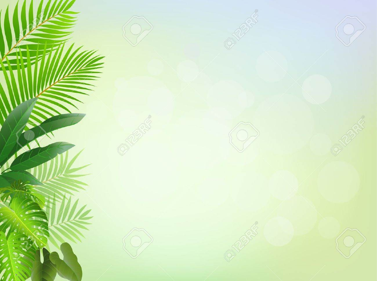 Tropical Background Stock Image  Image:  1300x972