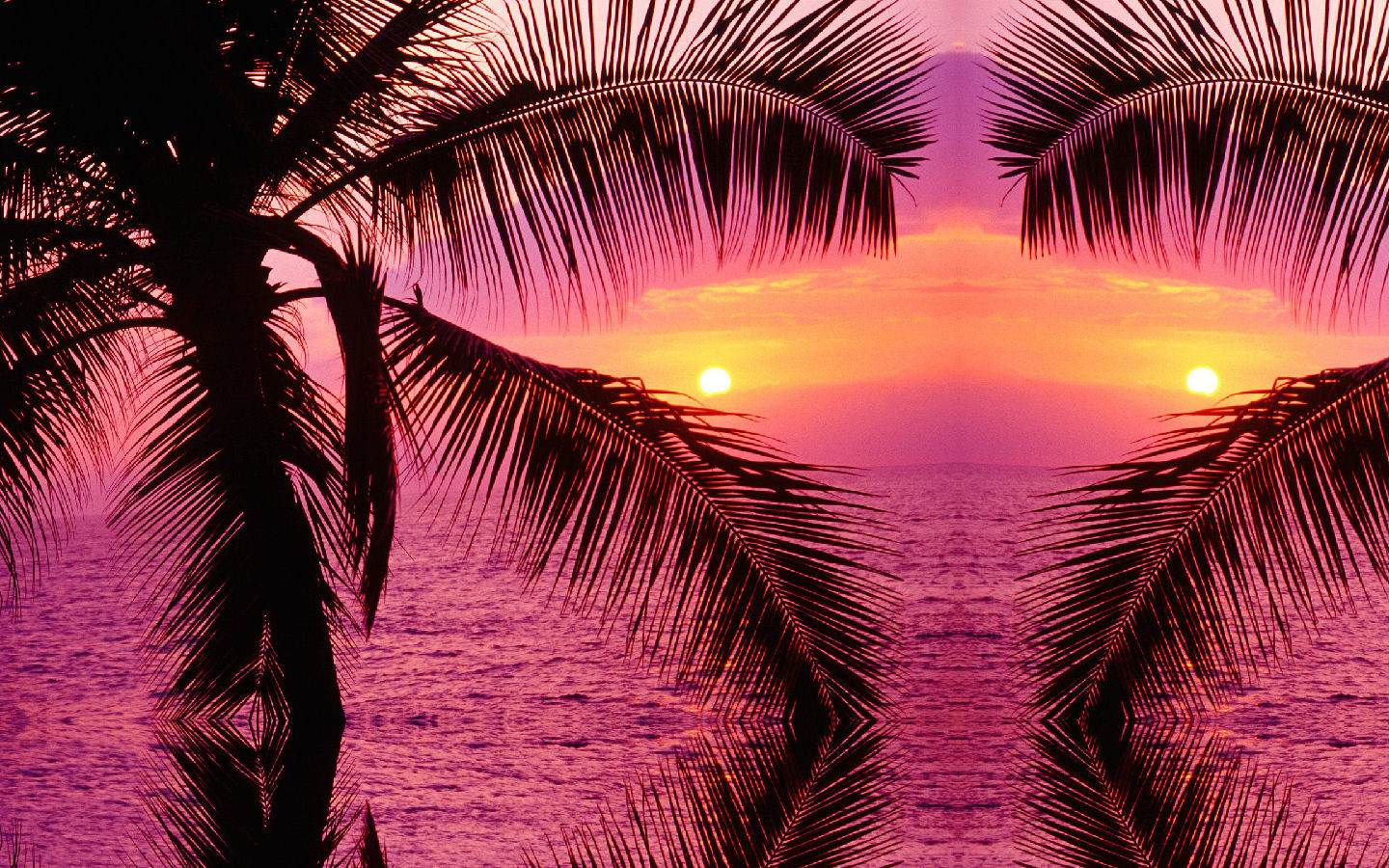 Tropical Background Royalty Free Stock Images  Image:  1440x900