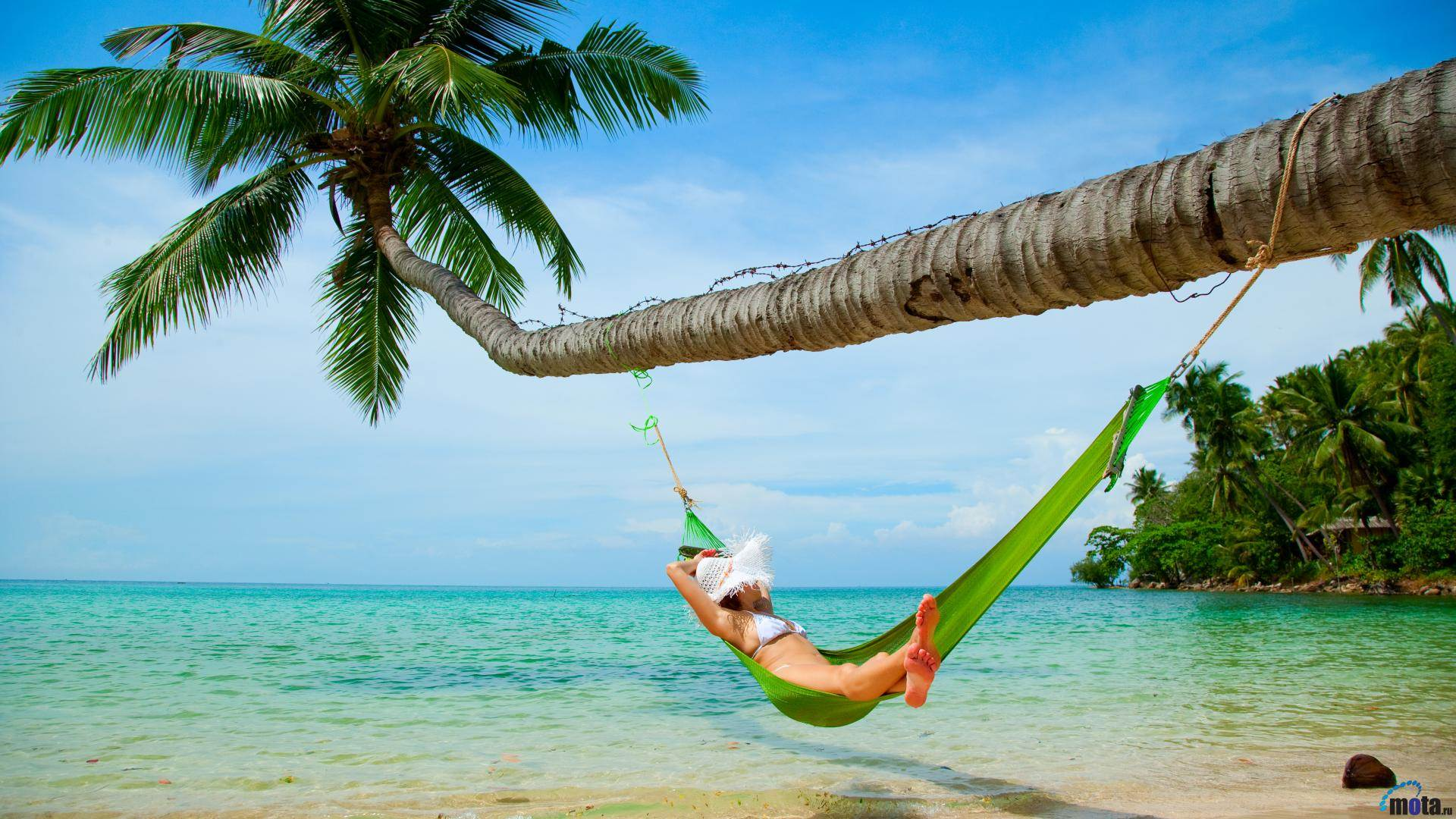 tropical beach hammock  u2013 wallpaper   u2013 adorable wallpapers  rh   avante biz