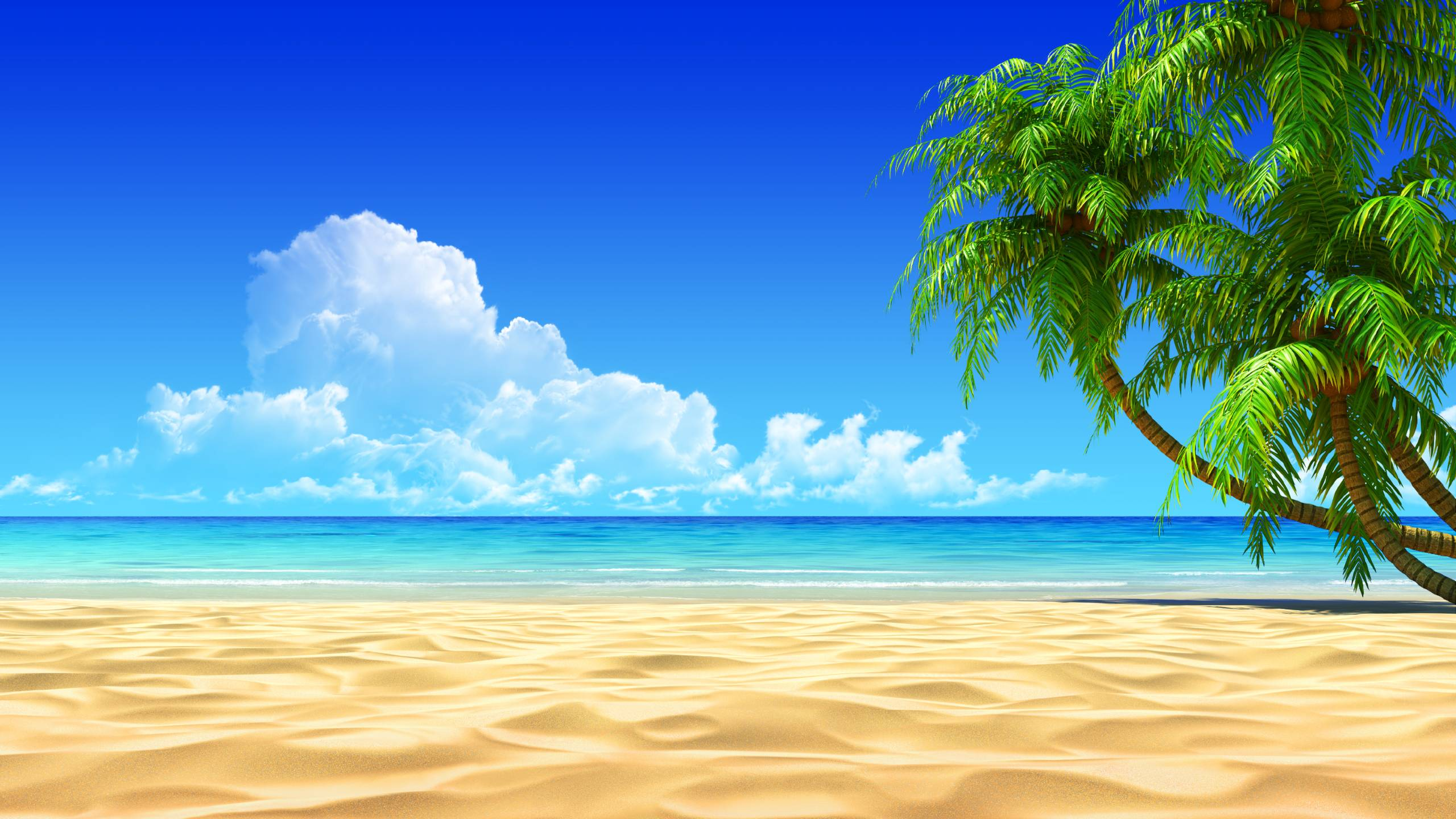HD Tropical Wallpapers  Tropical Best Pictures Collection 2560x1440
