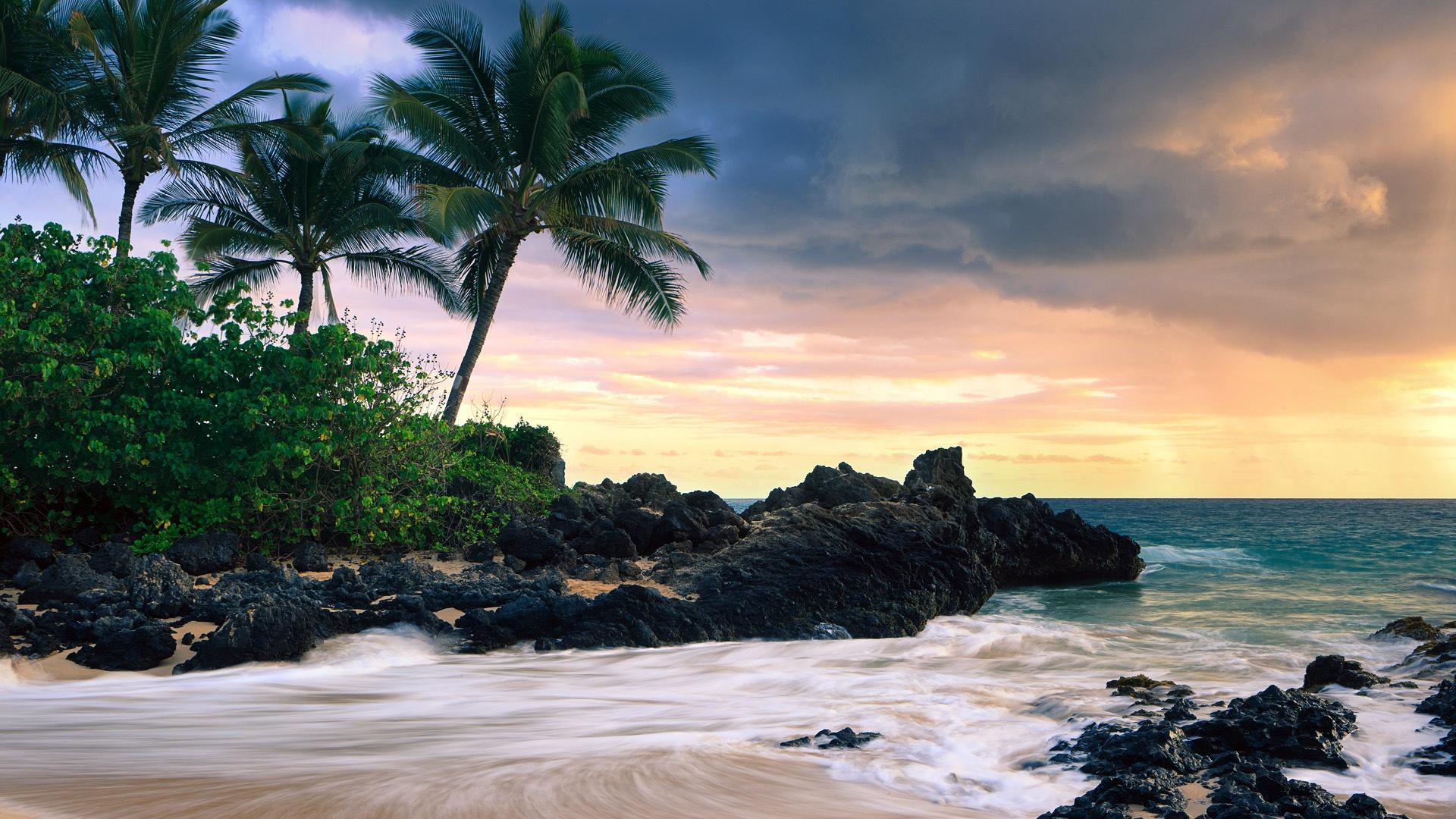 beautiful tropical beach hd - photo #11