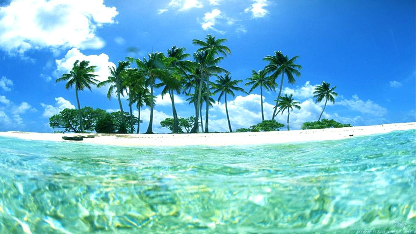 Wallpapers Collection: «Tropical Wallpapers» 1366x768