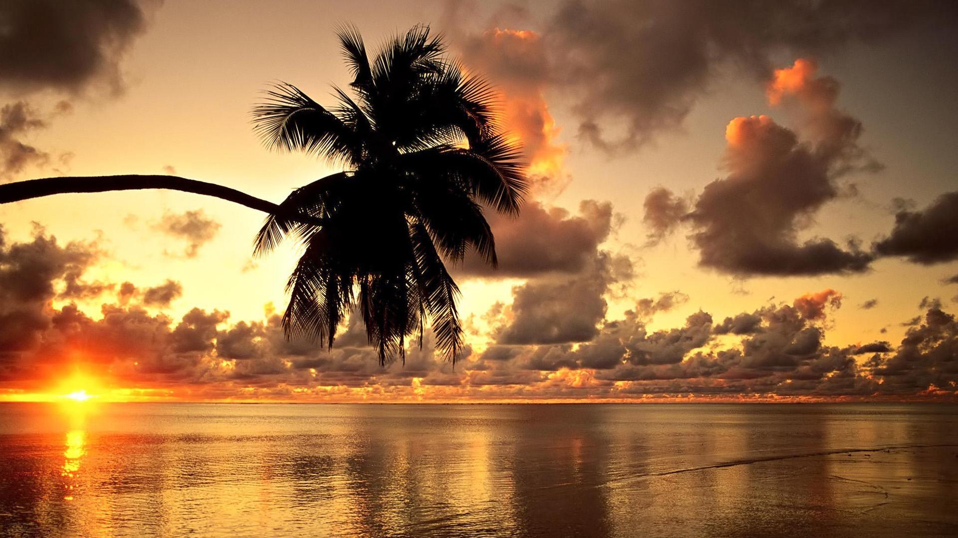 Tropical Sunset Wallpaper Desktop 1920x1080