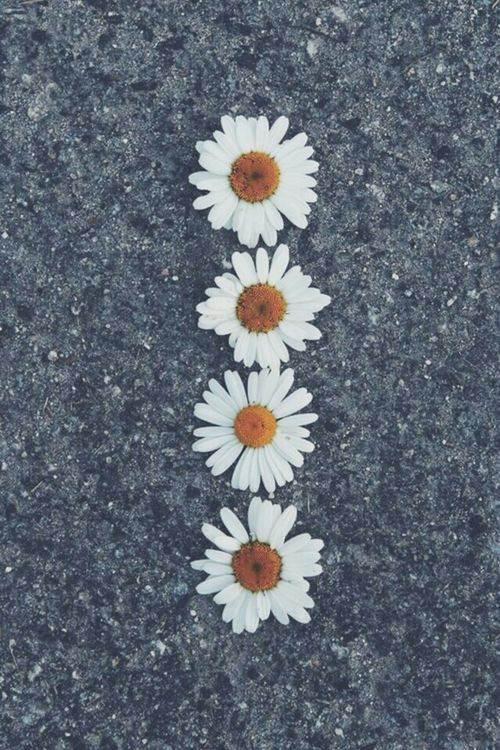 Cute Wallpaper Tumblr 500x750