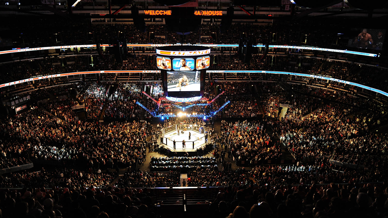 Ufc wallpaper 1600x900 voltagebd Image collections