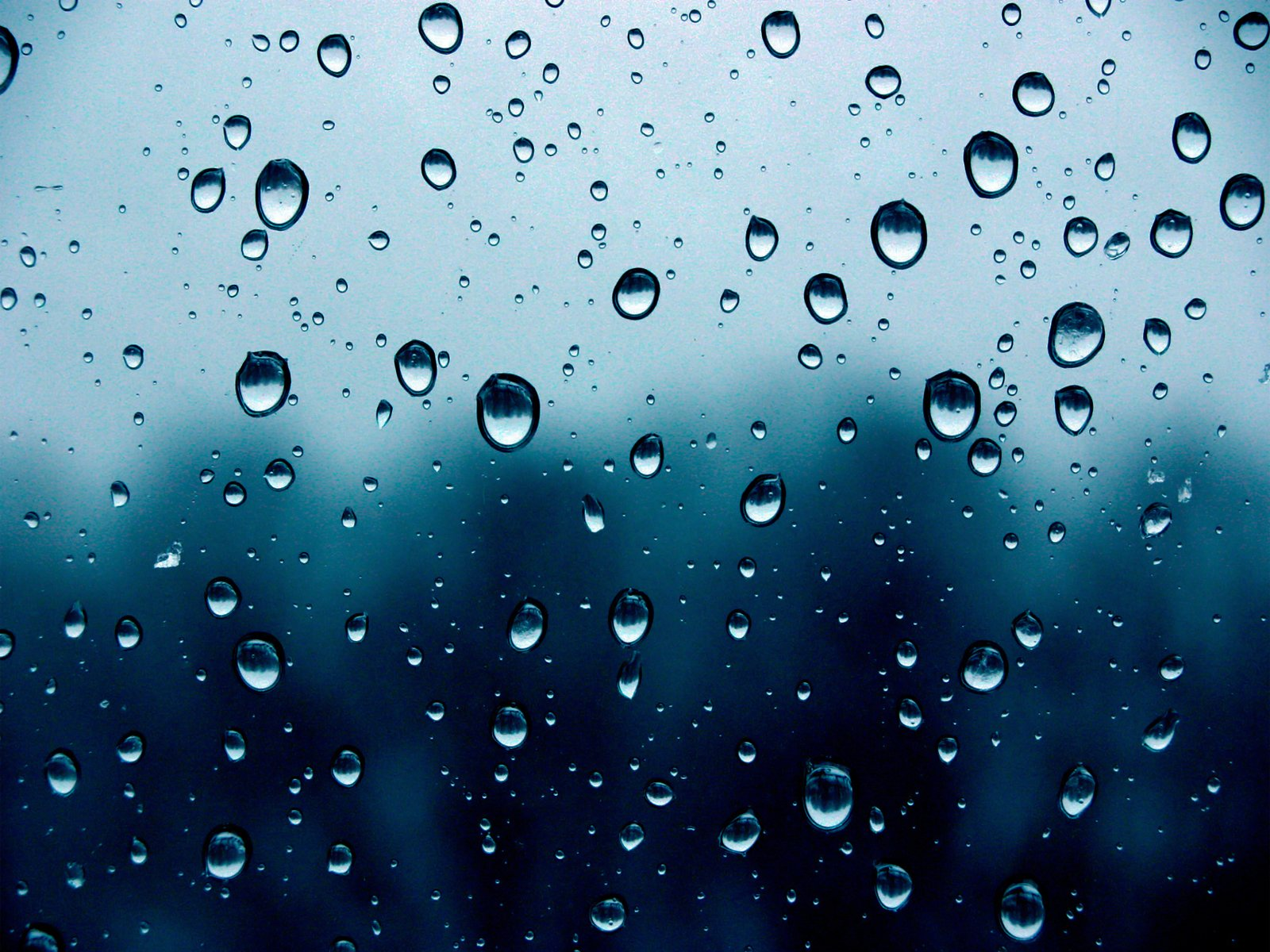 Rainwater Room Wallpaper Picture Collection